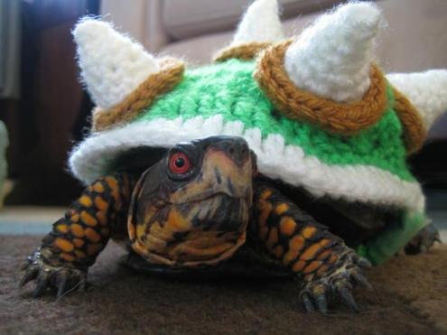 Turtle Bowser Cosplay