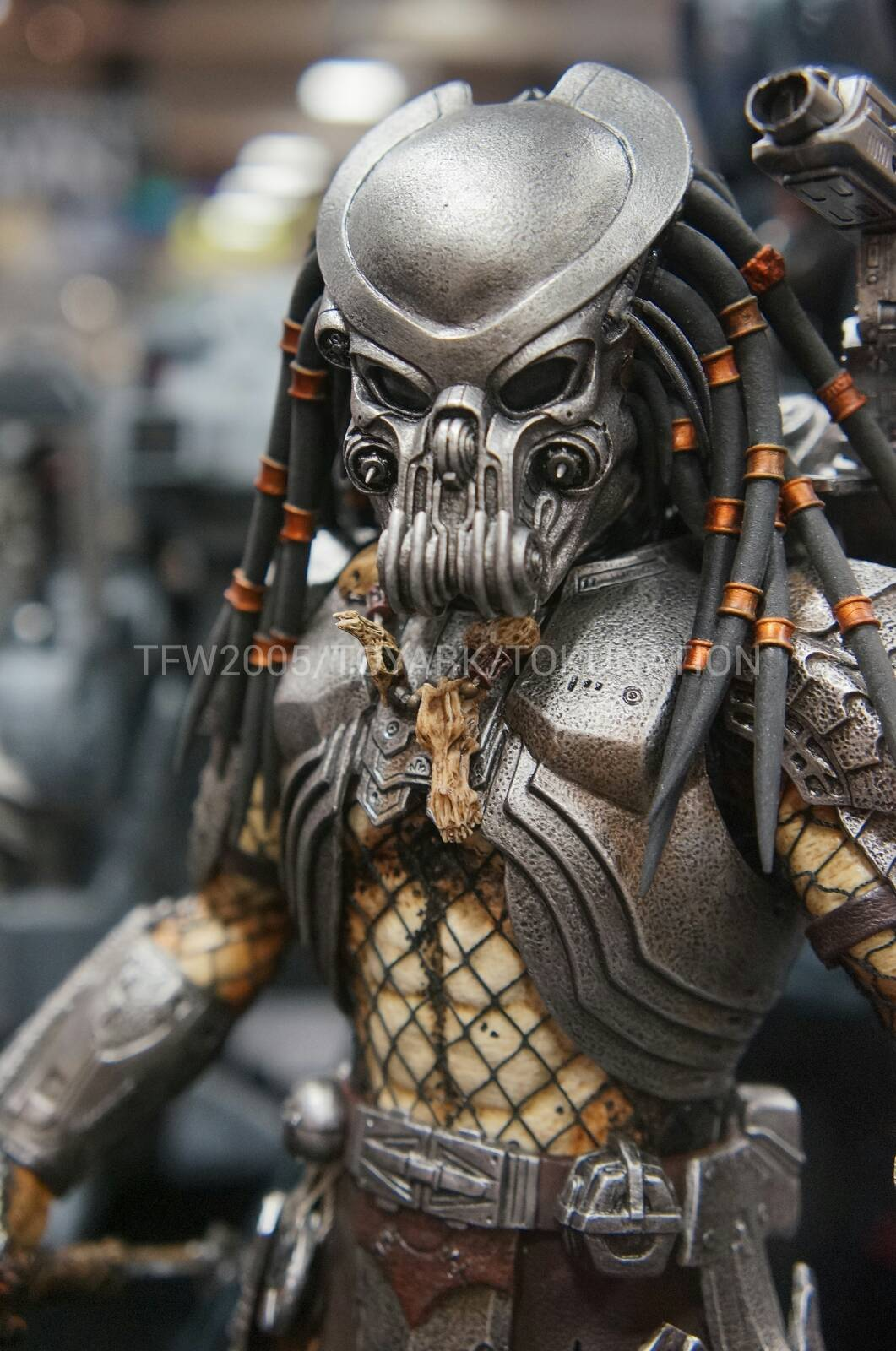 Product announcement hot toys mms avp celtic predator ver 2 hot toys mms avp celtic predator ver 2 voltagebd Image collections