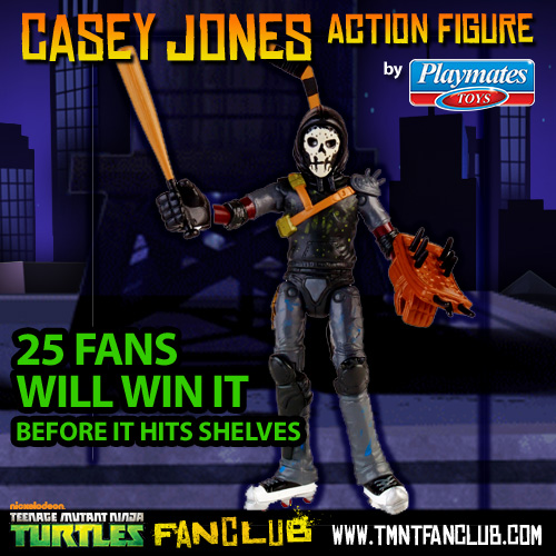 Casey Jones 2014 Action Figure