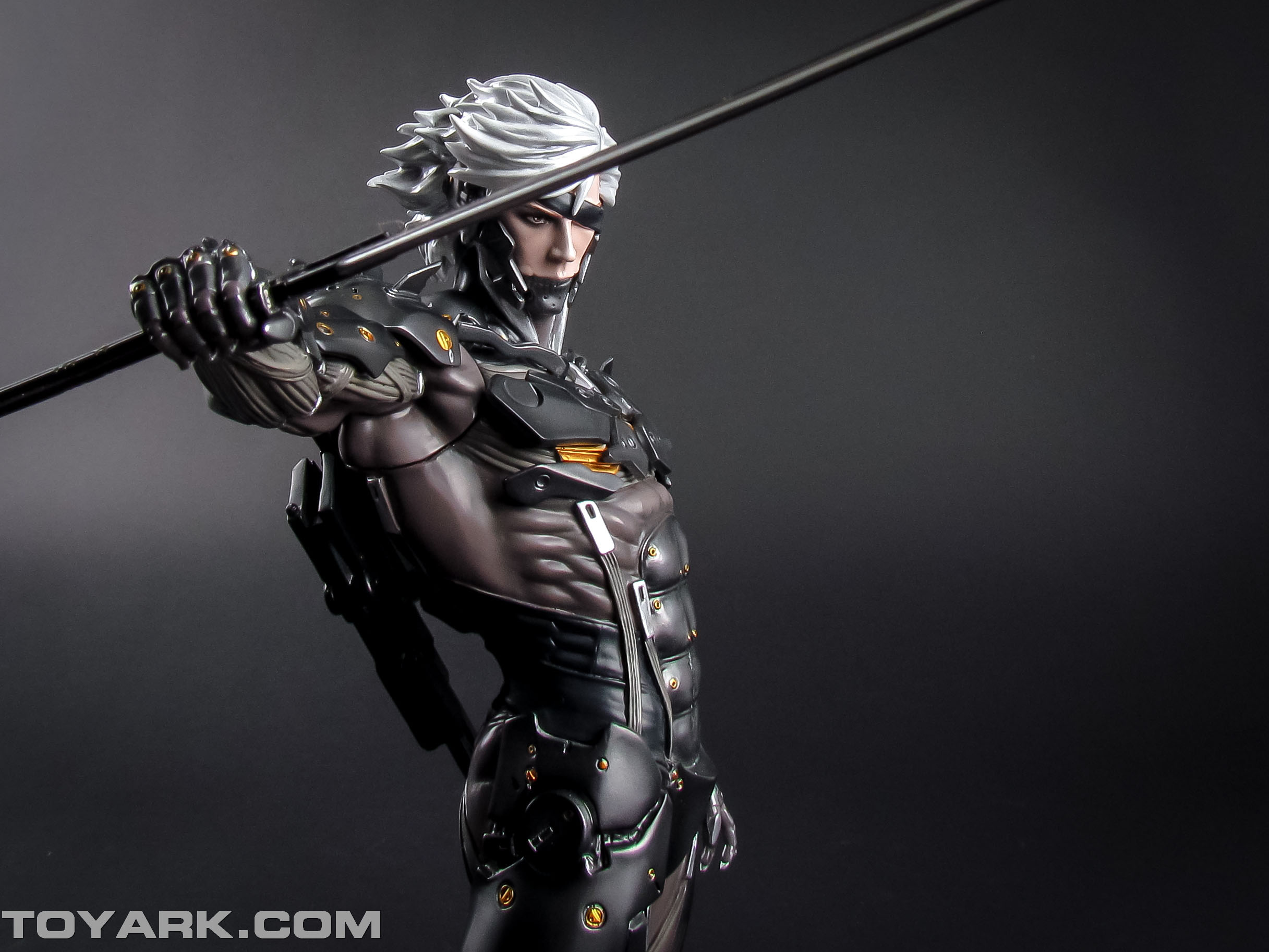 Metal Gear Rising Raiden Model Kit 011