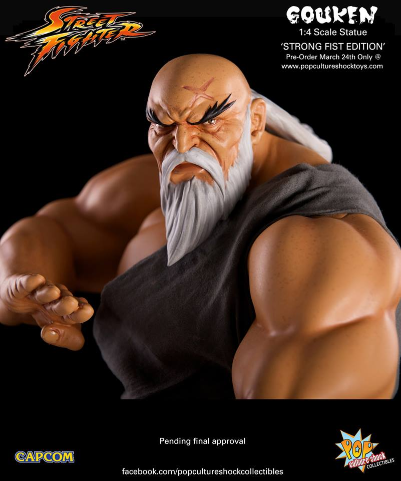 Street Fighter Gouken Strong Fist Statue 017