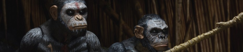 NECA Dawn of the Planet of the Apes Series 1 Figures 003