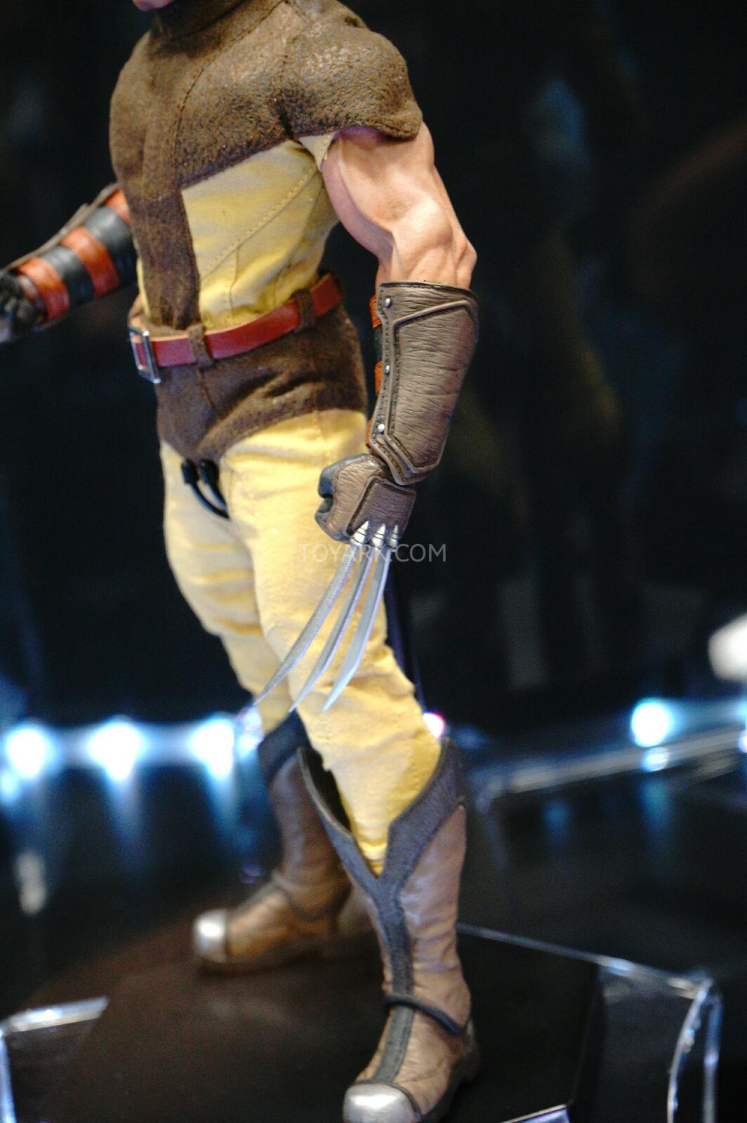 [Sideshow] Marvel Sixth Scale Collection - Wolverine DSC07552