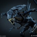 http://news.toyark.com/wp-content/uploads/sites/4/2015/01/NECA-Alien-Queen-034-150x150.jpg