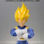 SH Figuarts SS Vegeta Limited Color 006