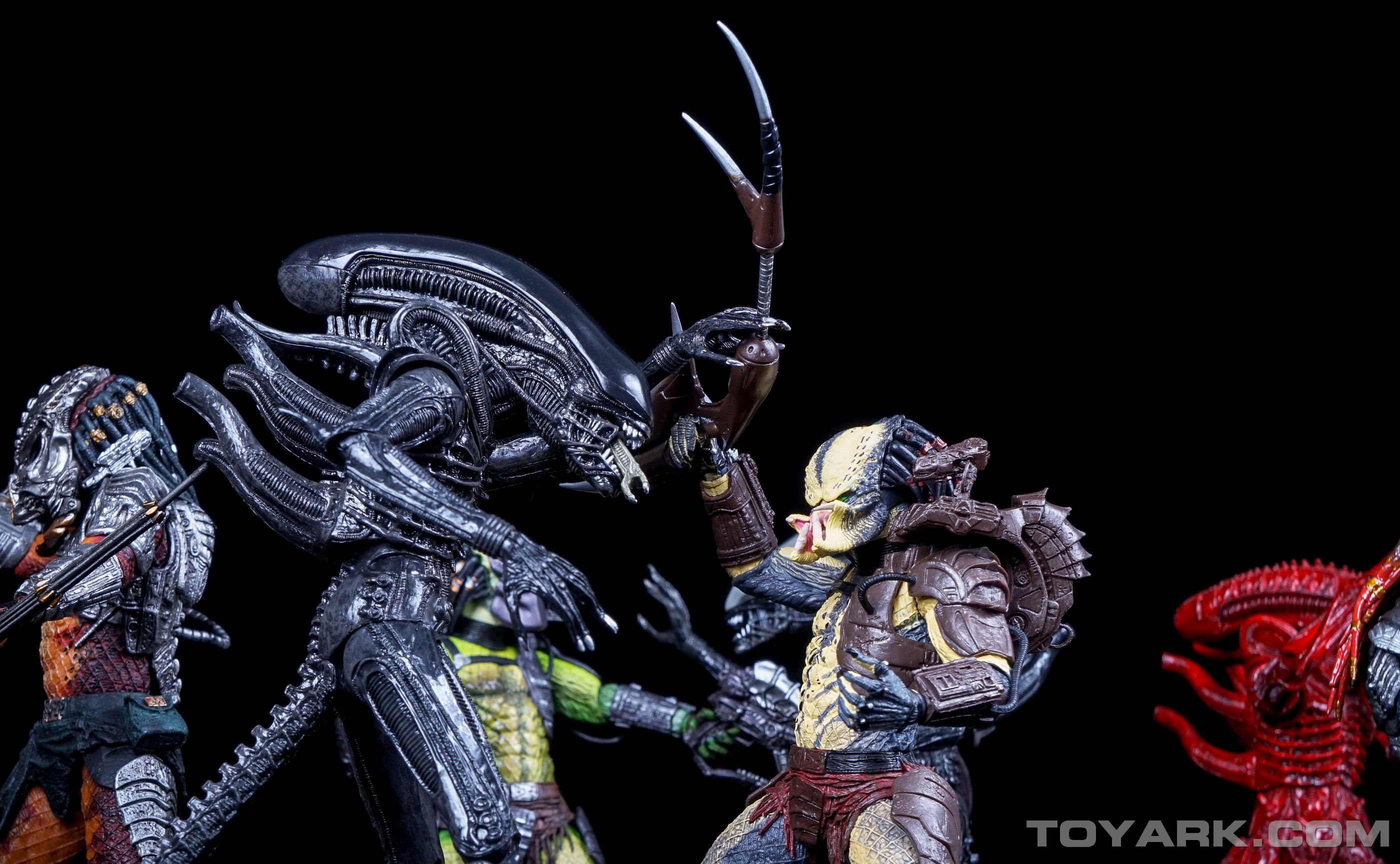 http://news.toyark.com/wp-content/uploads/sites/4/2015/08/TRU-Alien-vs-Predaator-Exclusive-067.jpg