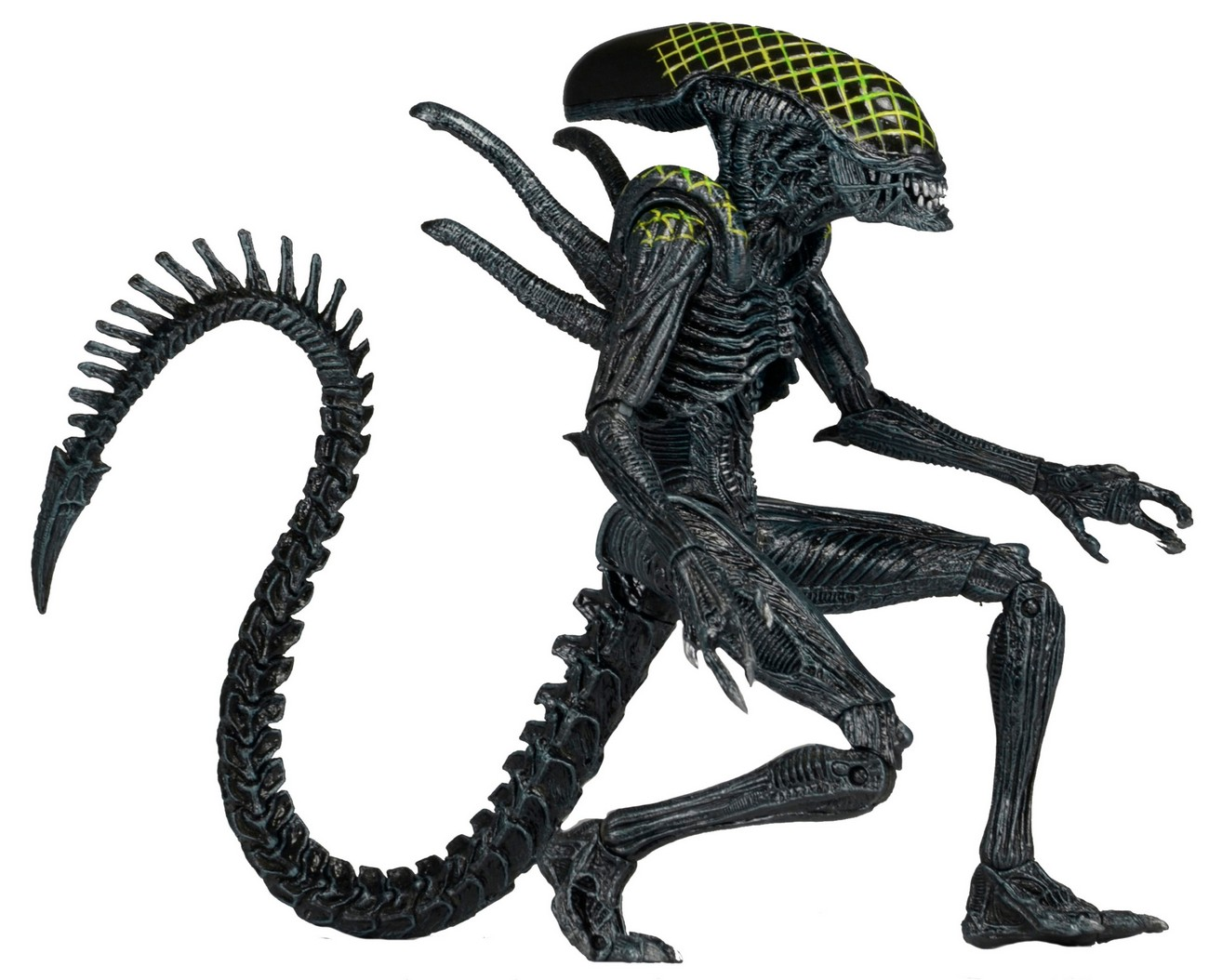 Details And Photos For Neca Aliens Series 7 The Toyark