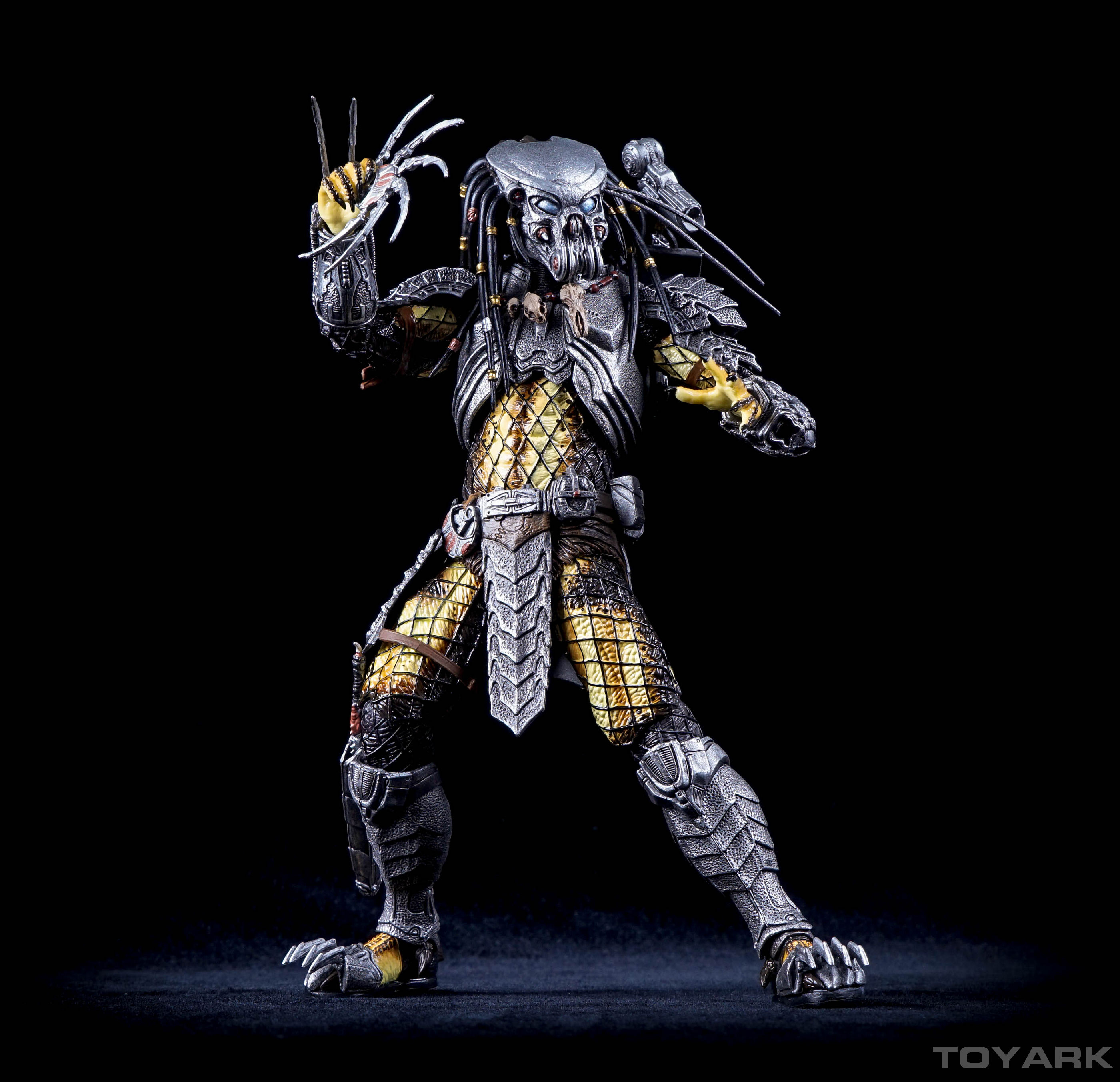 http://news.toyark.com/wp-content/uploads/sites/4/2015/12/NECA-AvP-Celtic-Predator-025.jpg
