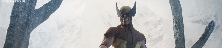 Wolverine Sixth Scale Figure 002