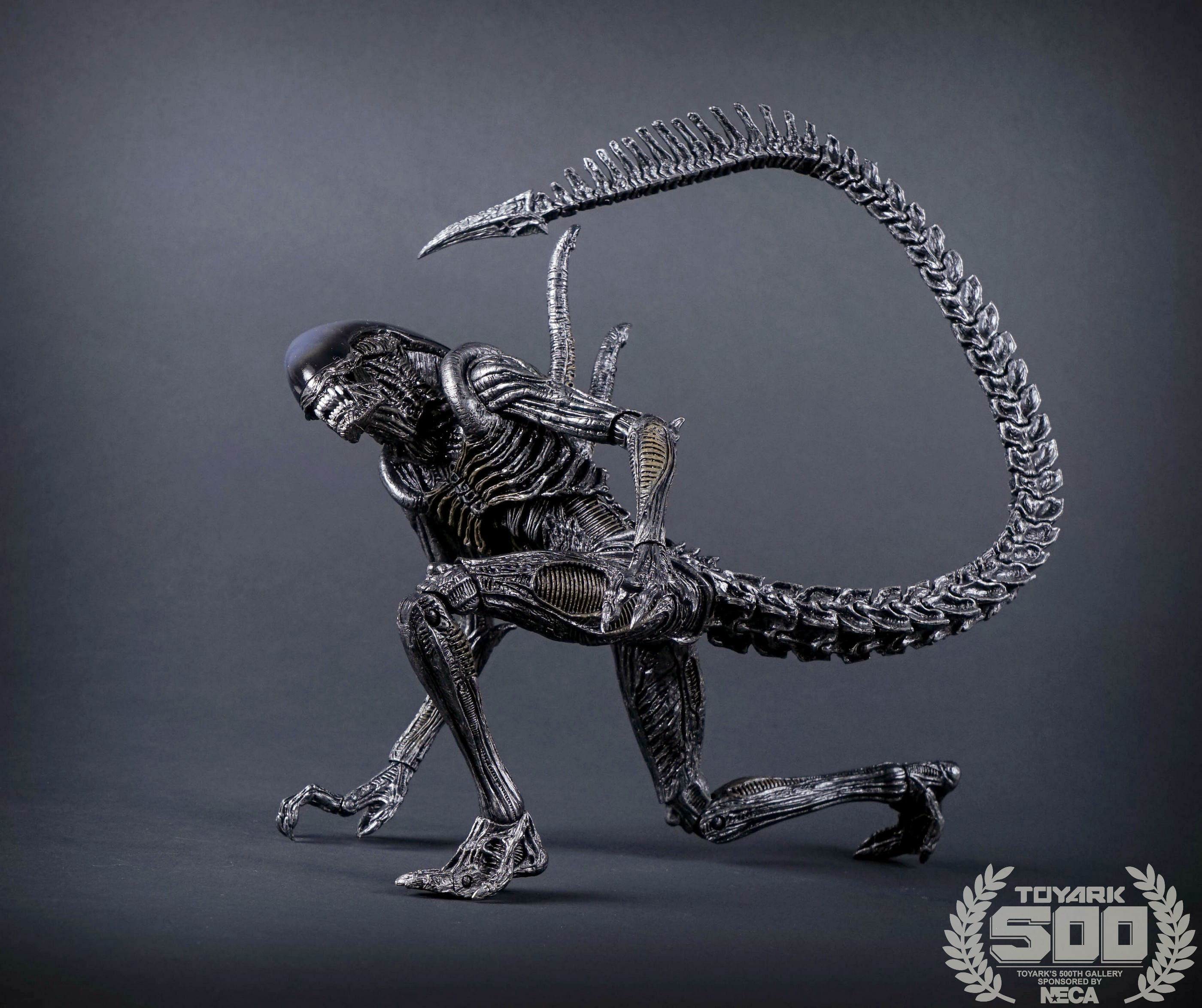 http://news.toyark.com/wp-content/uploads/sites/4/2016/01/Alien-Series-7-NECA-035.jpg