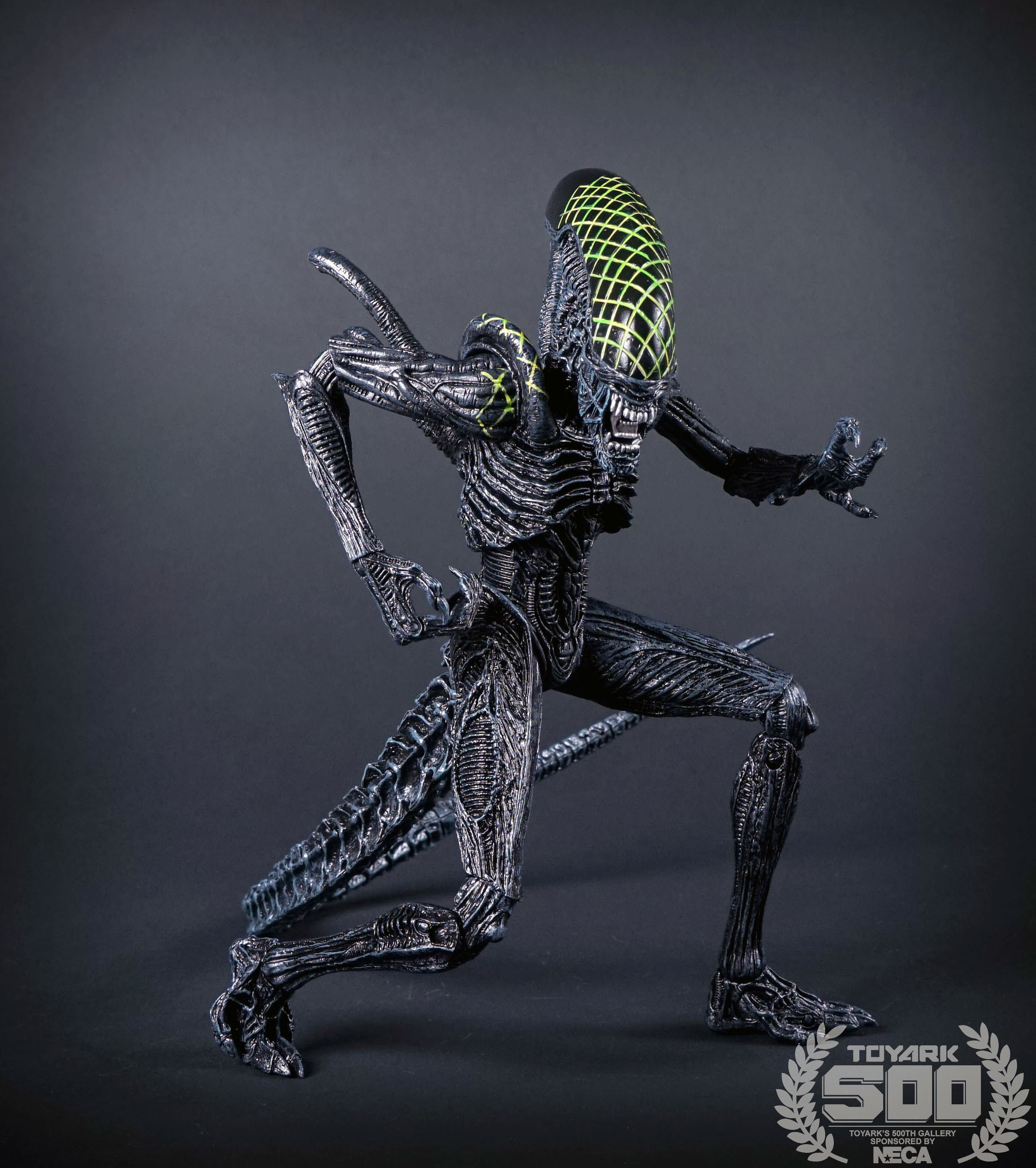 http://news.toyark.com/wp-content/uploads/sites/4/2016/01/Alien-Series-7-NECA-066.jpg