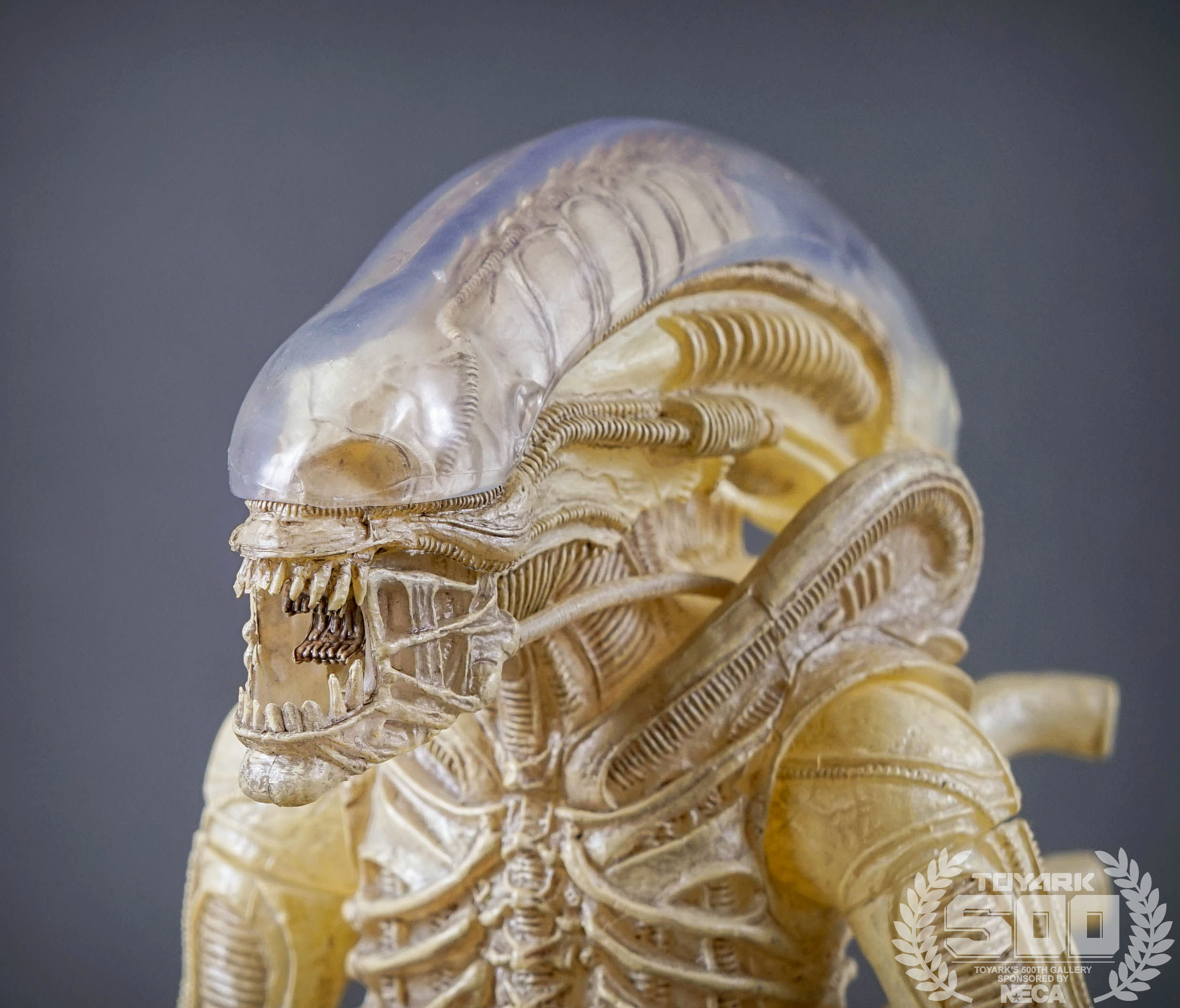 http://news.toyark.com/wp-content/uploads/sites/4/2016/01/Alien-Series-7-NECA-082.jpg