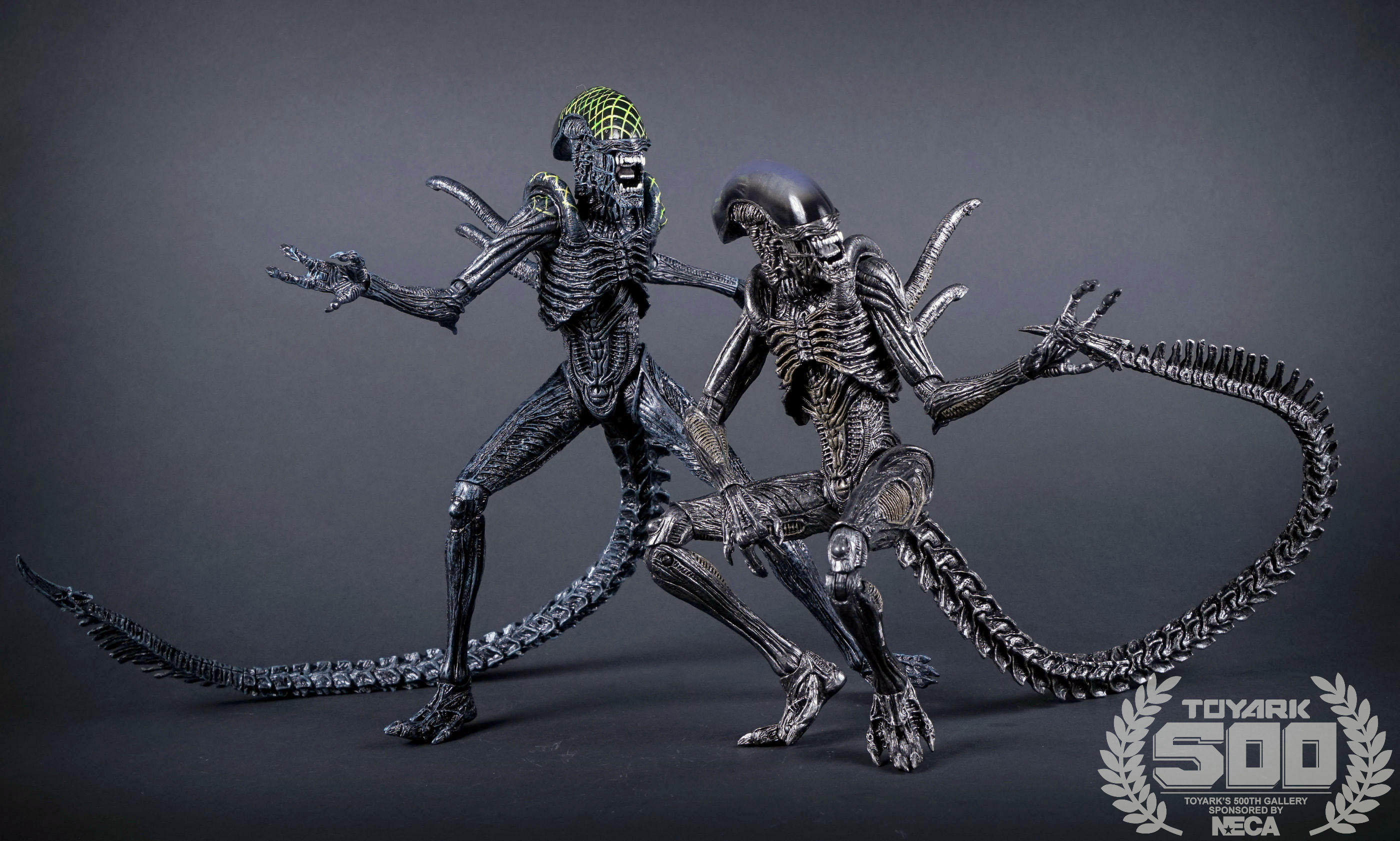 http://news.toyark.com/wp-content/uploads/sites/4/2016/01/Alien-Series-7-NECA-110.jpg