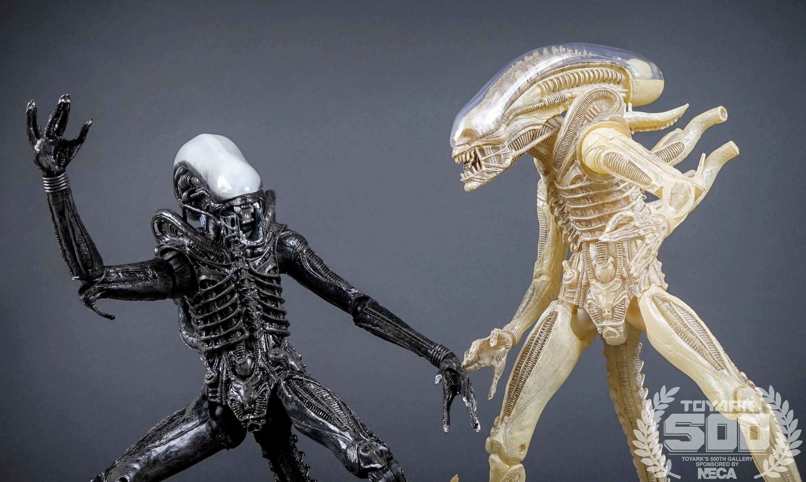 http://news.toyark.com/wp-content/uploads/sites/4/2016/01/Alien-Series-7-NECA-115.jpg