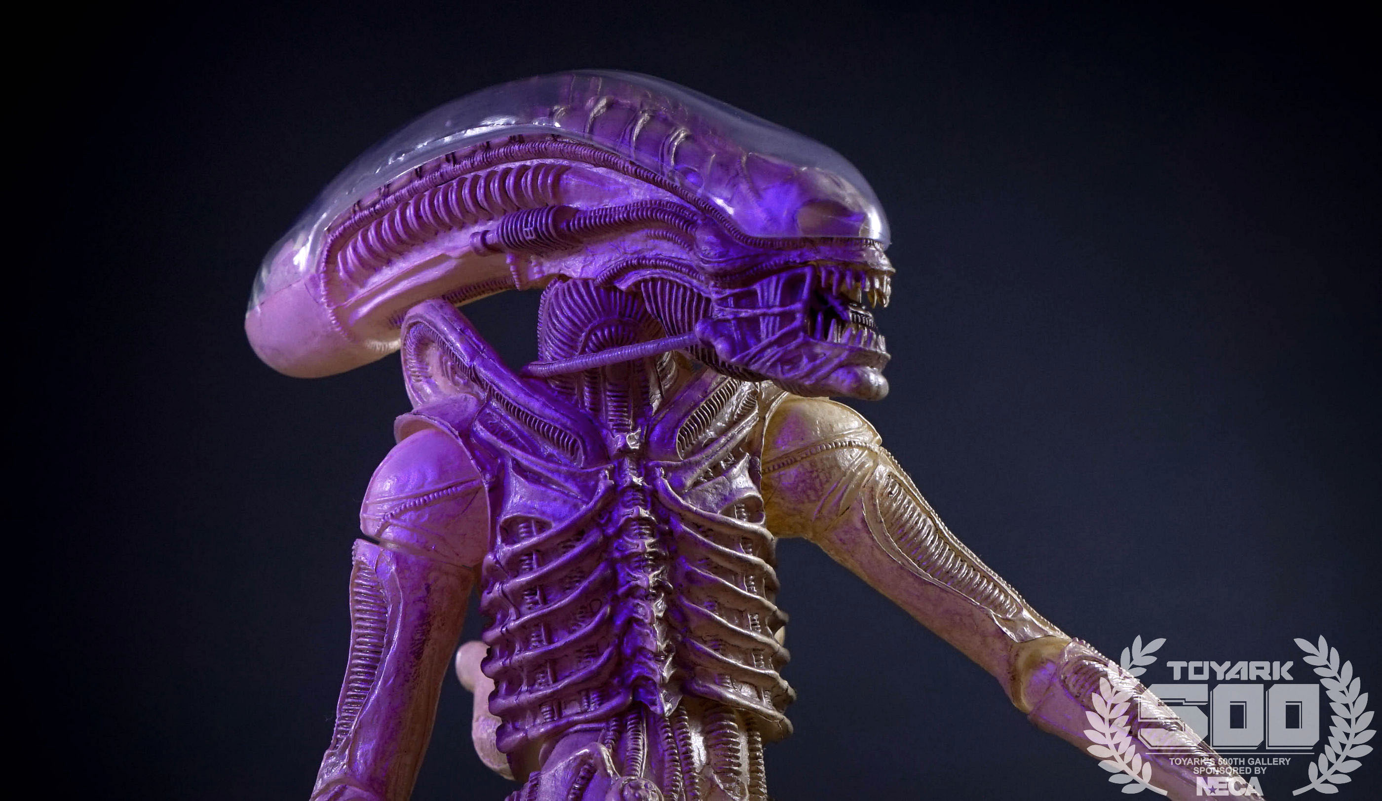 http://news.toyark.com/wp-content/uploads/sites/4/2016/01/Alien-Series-7-NECA-120.jpg