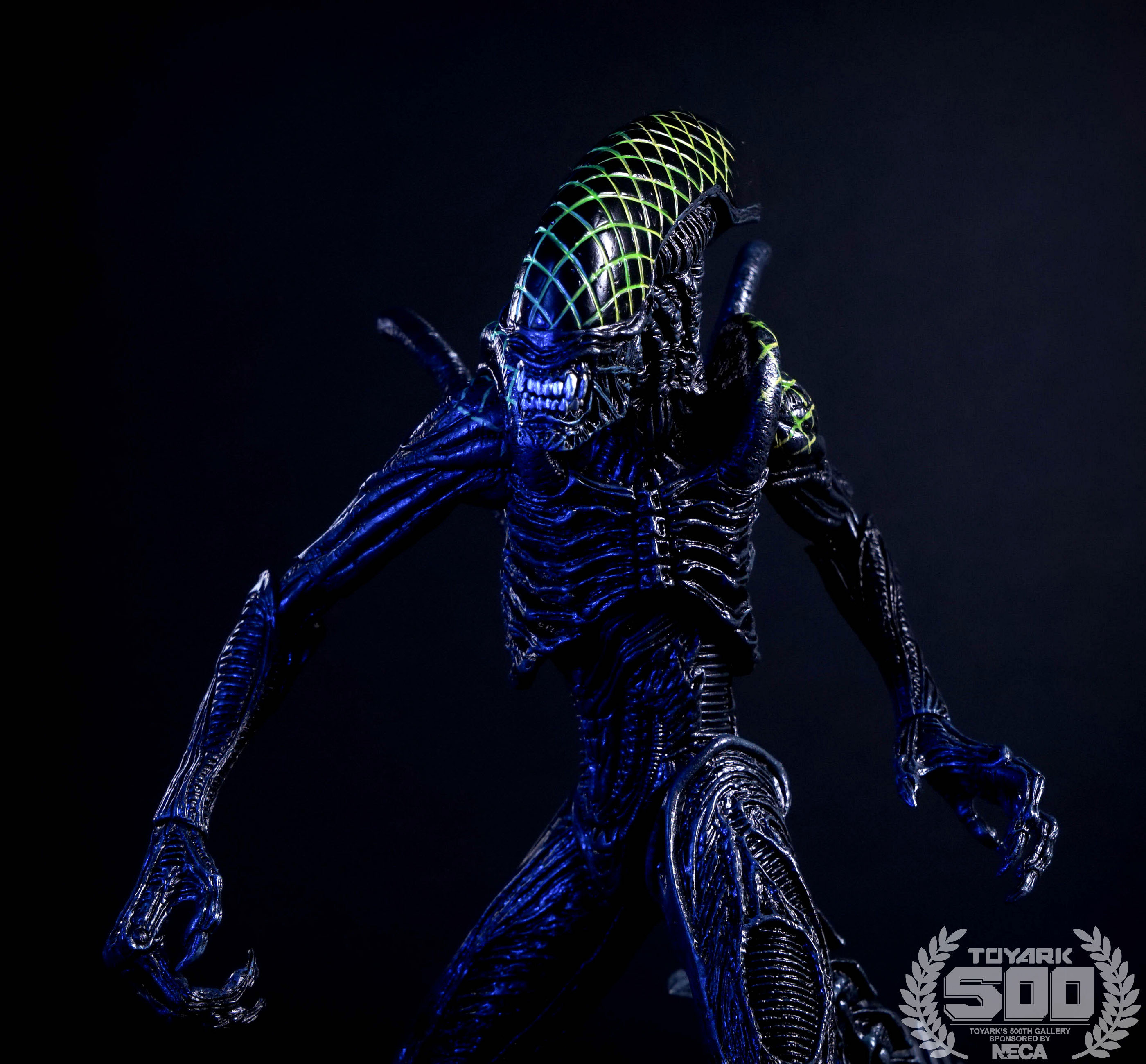 http://news.toyark.com/wp-content/uploads/sites/4/2016/01/Alien-Series-7-NECA-124.jpg