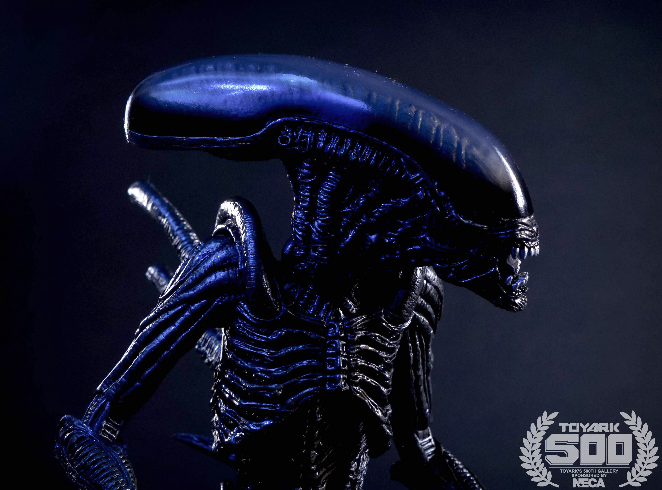 http://news.toyark.com/wp-content/uploads/sites/4/2016/01/Alien-Series-7-NECA-125.jpg