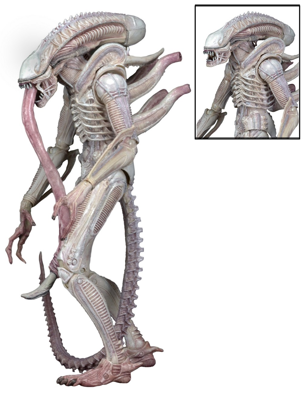 aliens series 9 figures meaning of colors