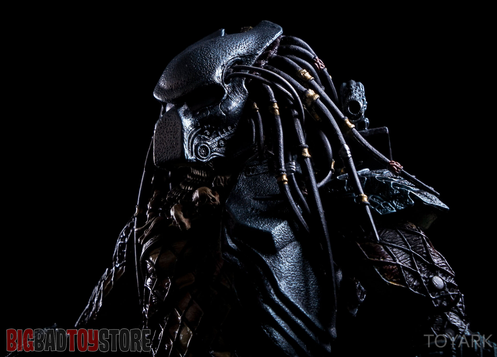 predator - photo #6