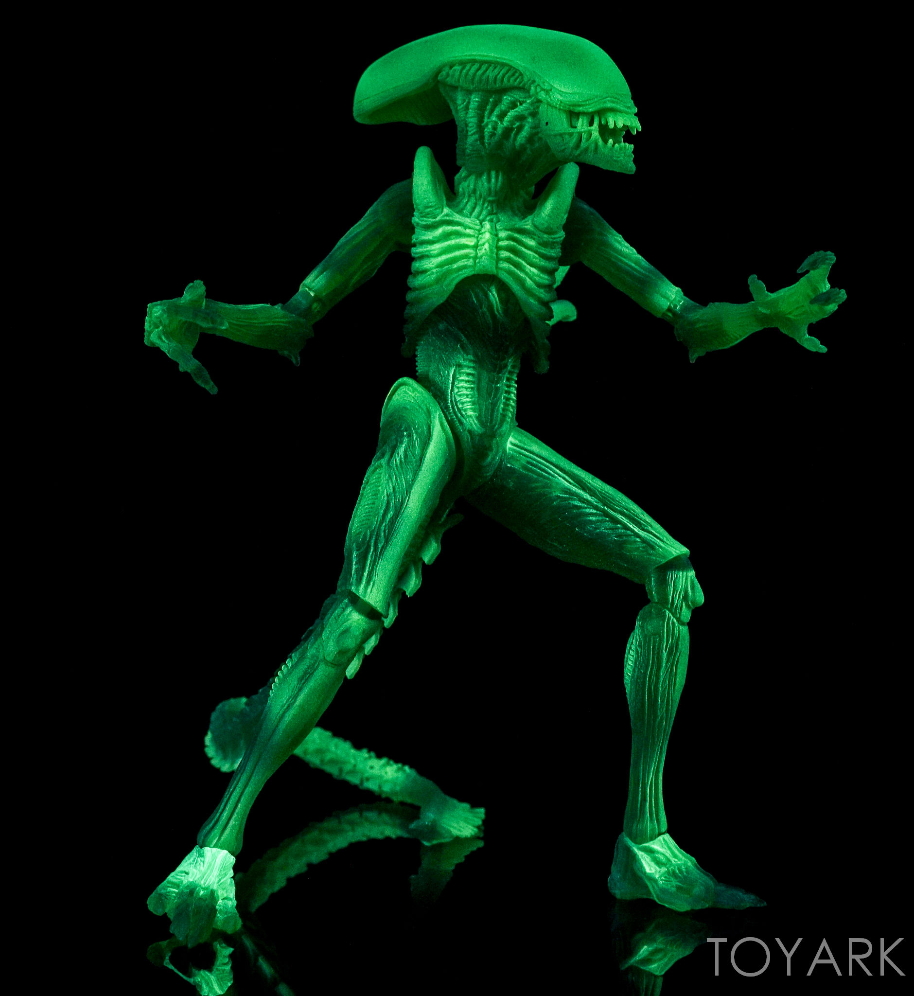 http://news.toyark.com/wp-content/uploads/sites/4/2016/09/NECA-AvP-Thermal-Vision-Alien-022.jpg