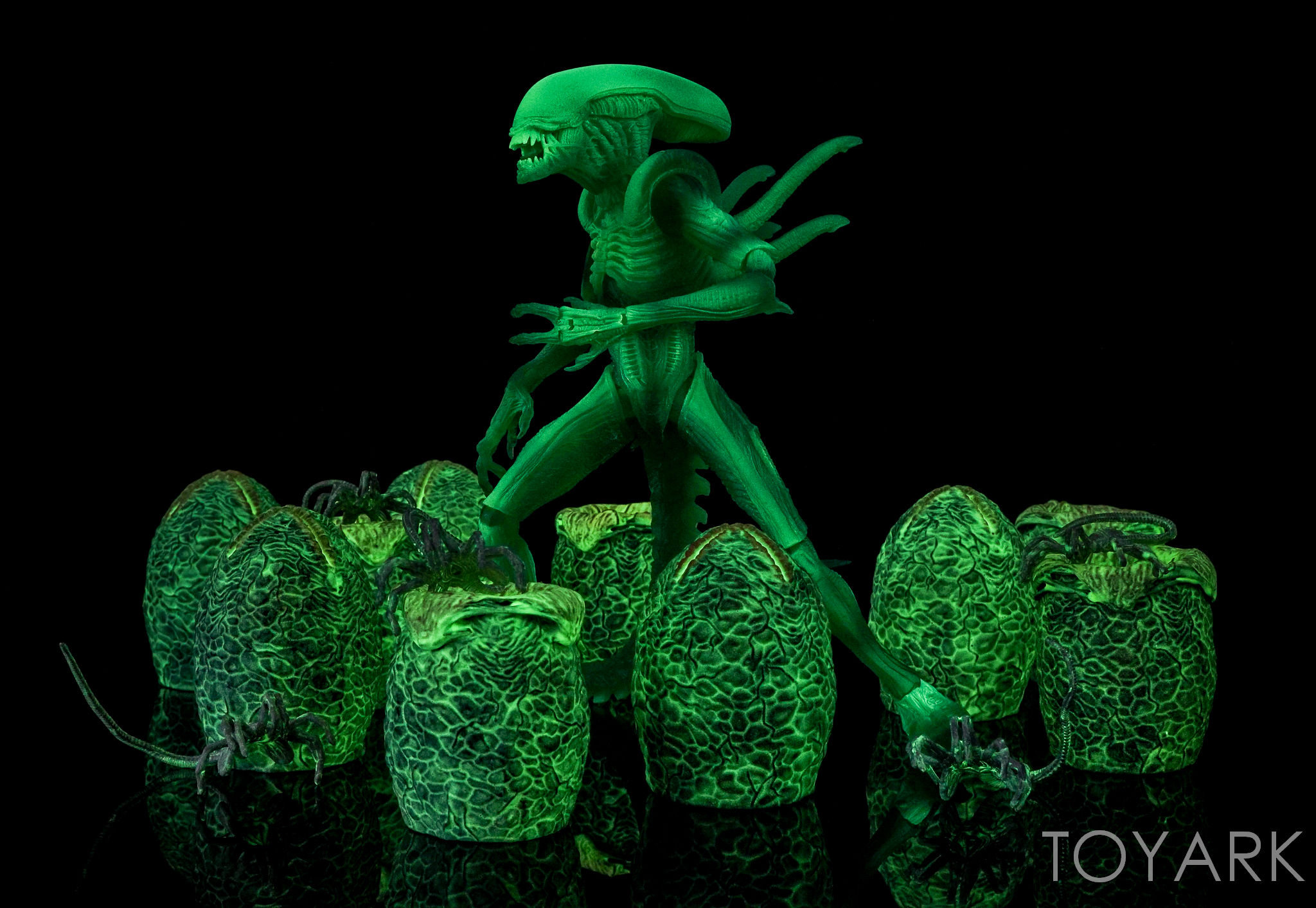 http://news.toyark.com/wp-content/uploads/sites/4/2016/09/NECA-AvP-Thermal-Vision-Alien-029.jpg