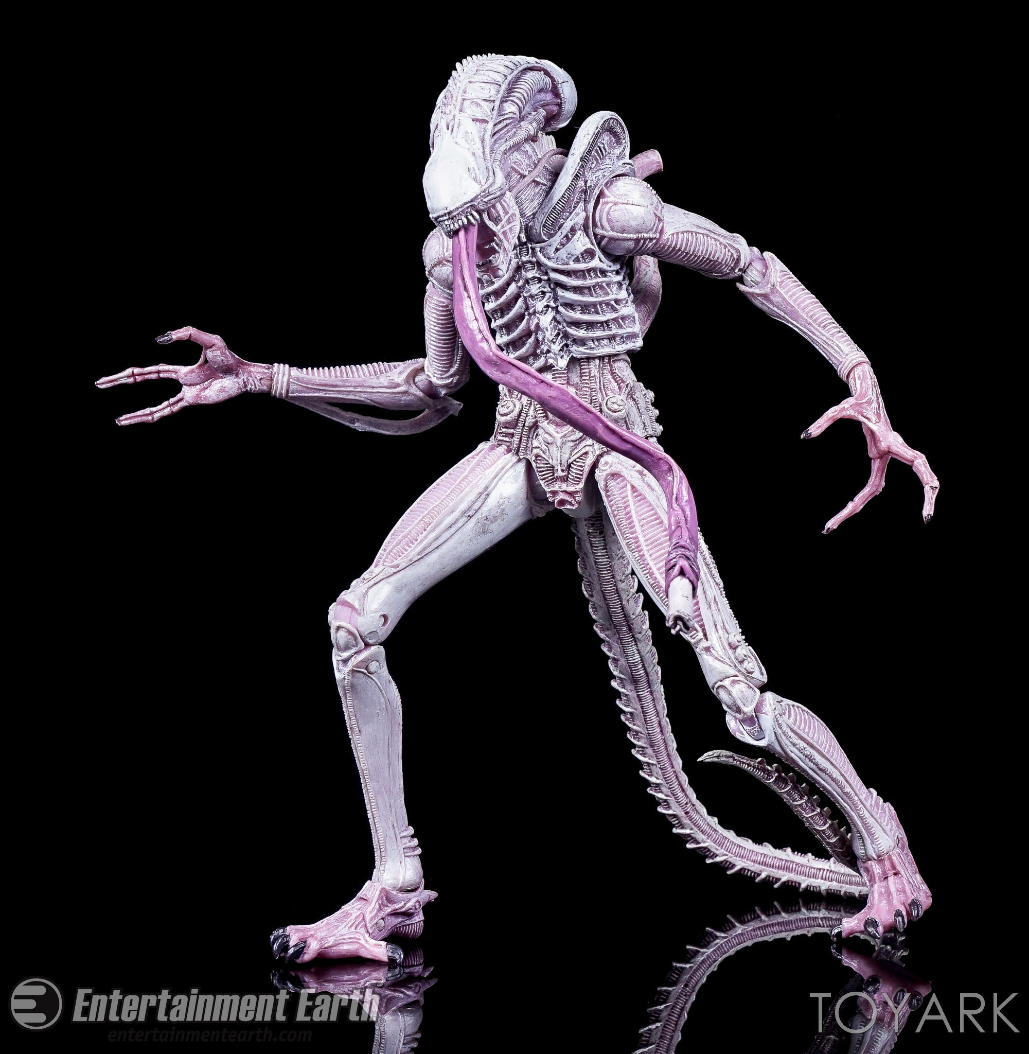 http://news.toyark.com/wp-content/uploads/sites/4/2016/10/Aliens-Series-9-NECA-076.jpg