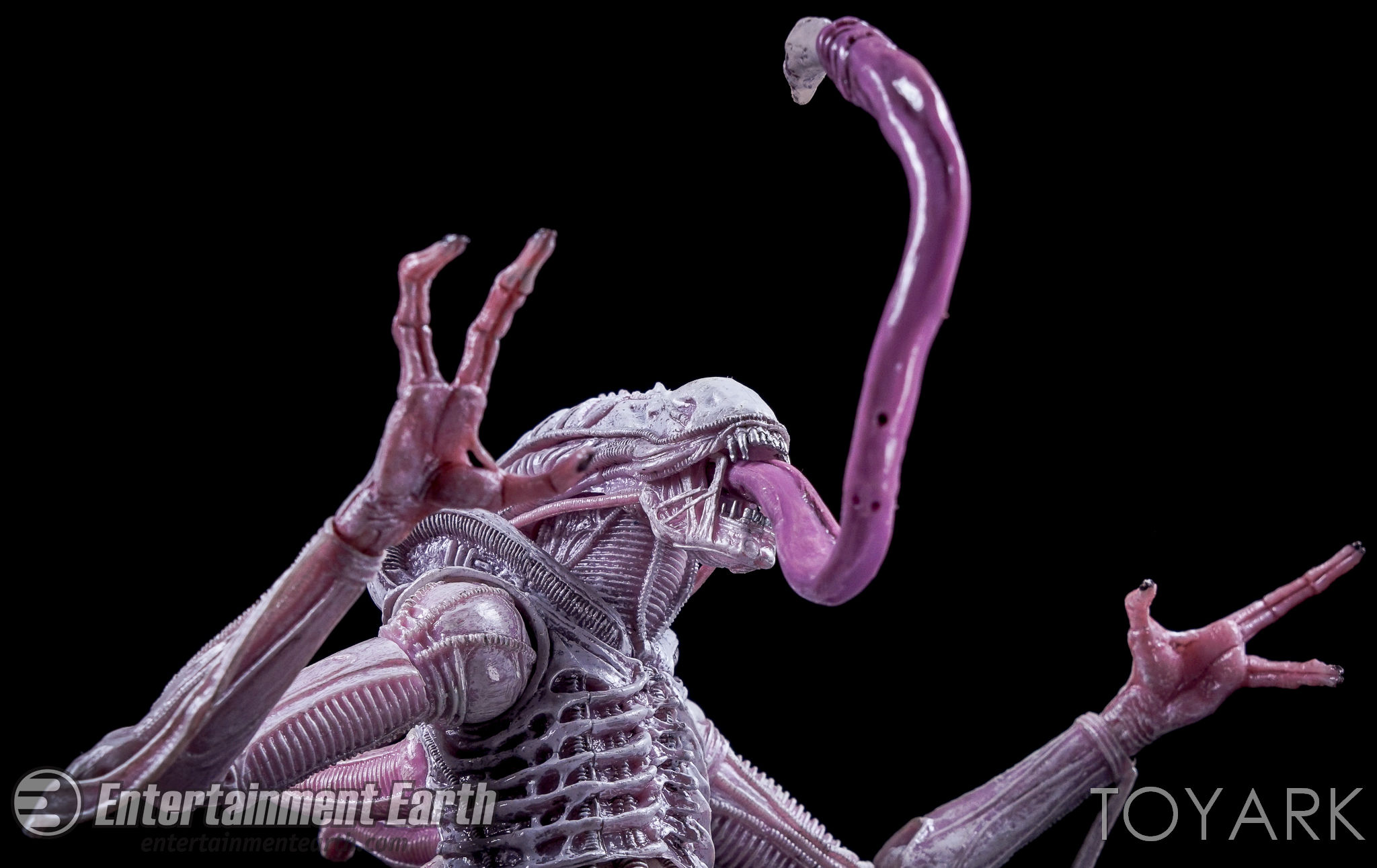 http://news.toyark.com/wp-content/uploads/sites/4/2016/10/Aliens-Series-9-NECA-081.jpg