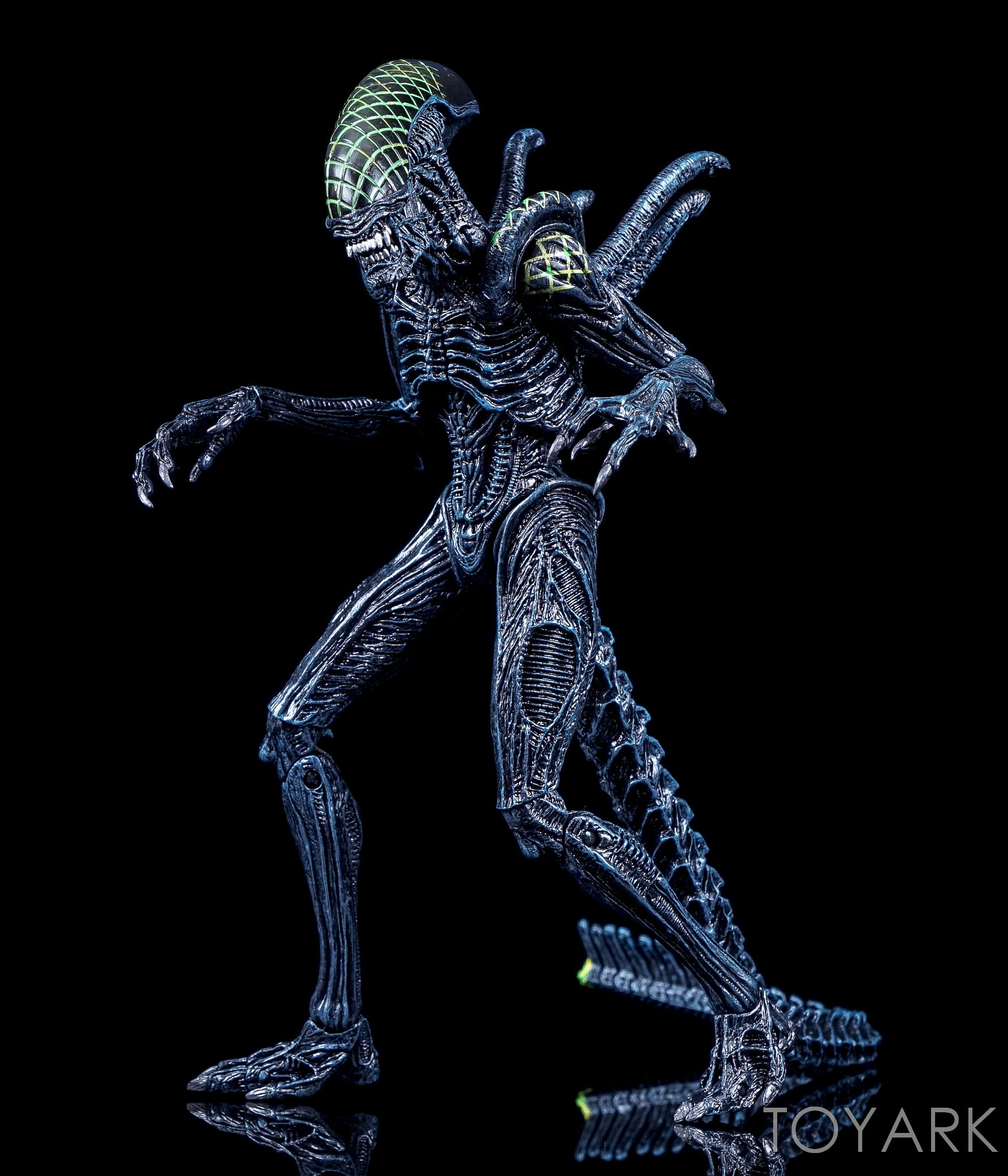 http://news.toyark.com/wp-content/uploads/sites/4/2016/10/NECA-AvP-Rivalry-Reborn-Set-020.jpg