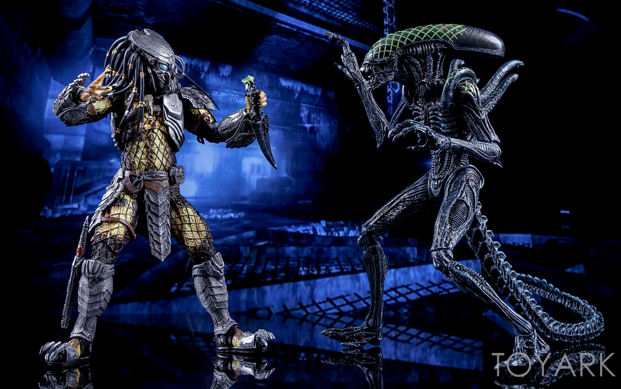 http://news.toyark.com/wp-content/uploads/sites/4/2016/10/NECA-AvP-Rivalry-Reborn-Set-055.jpg