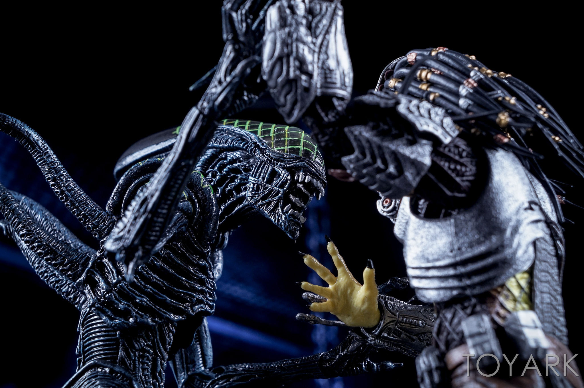 http://news.toyark.com/wp-content/uploads/sites/4/2016/10/NECA-AvP-Rivalry-Reborn-Set-062.jpg