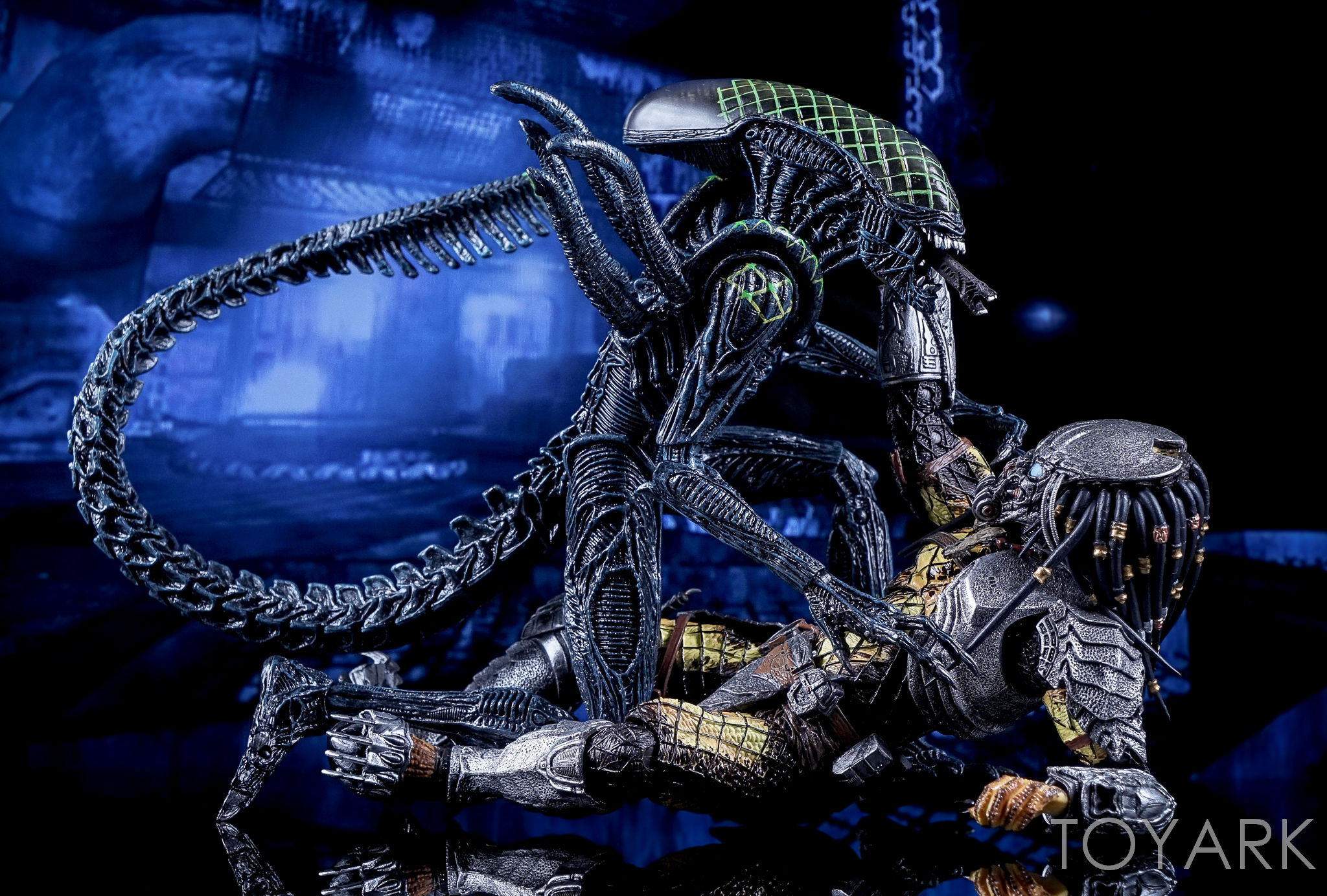 http://news.toyark.com/wp-content/uploads/sites/4/2016/10/NECA-AvP-Rivalry-Reborn-Set-067.jpg