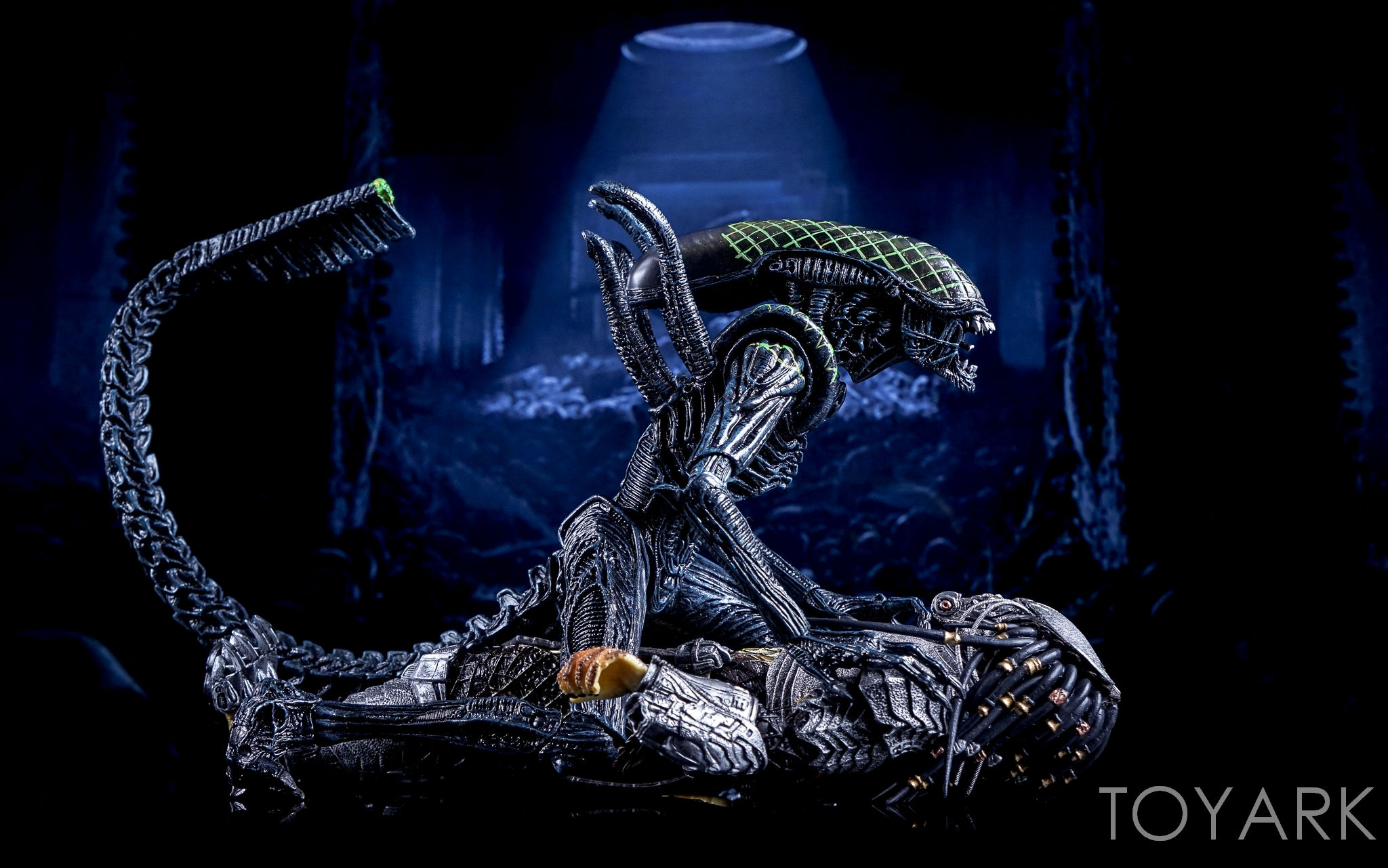 http://news.toyark.com/wp-content/uploads/sites/4/2016/10/NECA-AvP-Rivalry-Reborn-Set-070.jpg