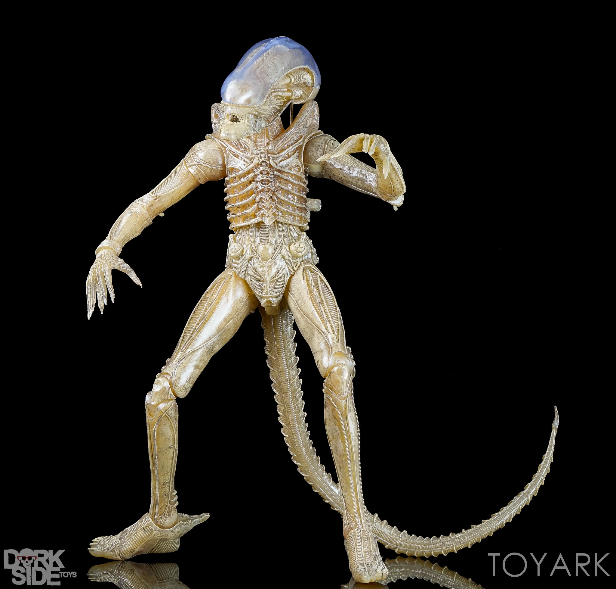 http://news.toyark.com/wp-content/uploads/sites/4/2016/10/NECA-Quarter-Scale-Concept-Alien-031.jpg