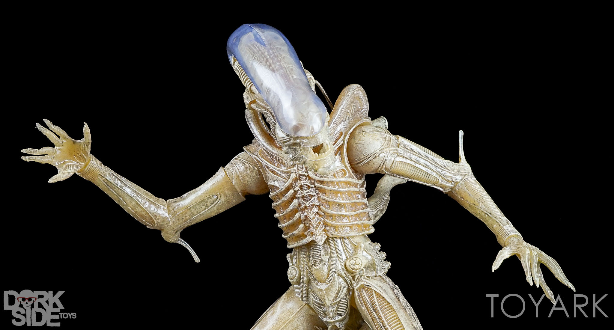 http://news.toyark.com/wp-content/uploads/sites/4/2016/10/NECA-Quarter-Scale-Concept-Alien-035.jpg