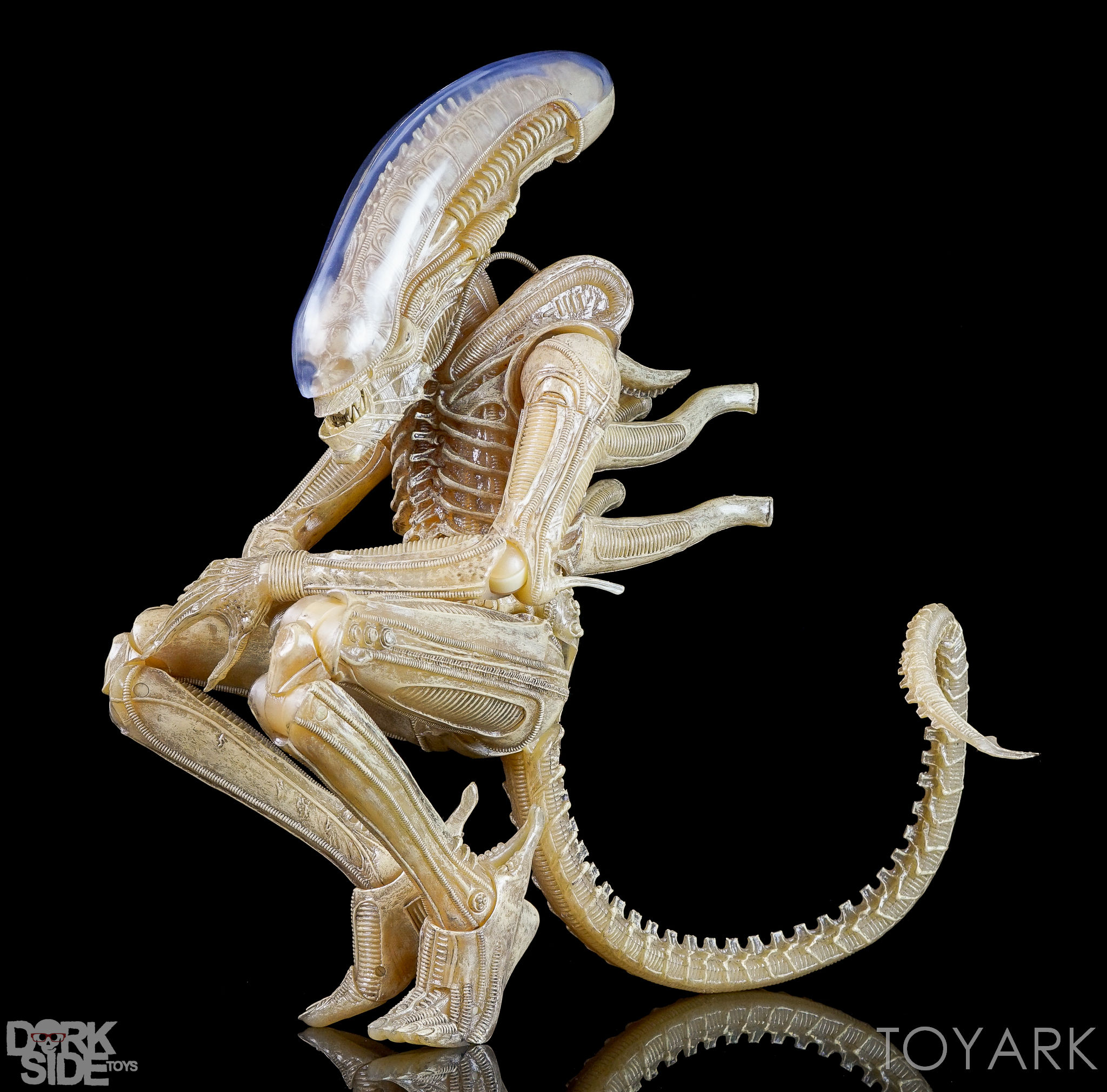 http://news.toyark.com/wp-content/uploads/sites/4/2016/10/NECA-Quarter-Scale-Concept-Alien-039.jpg