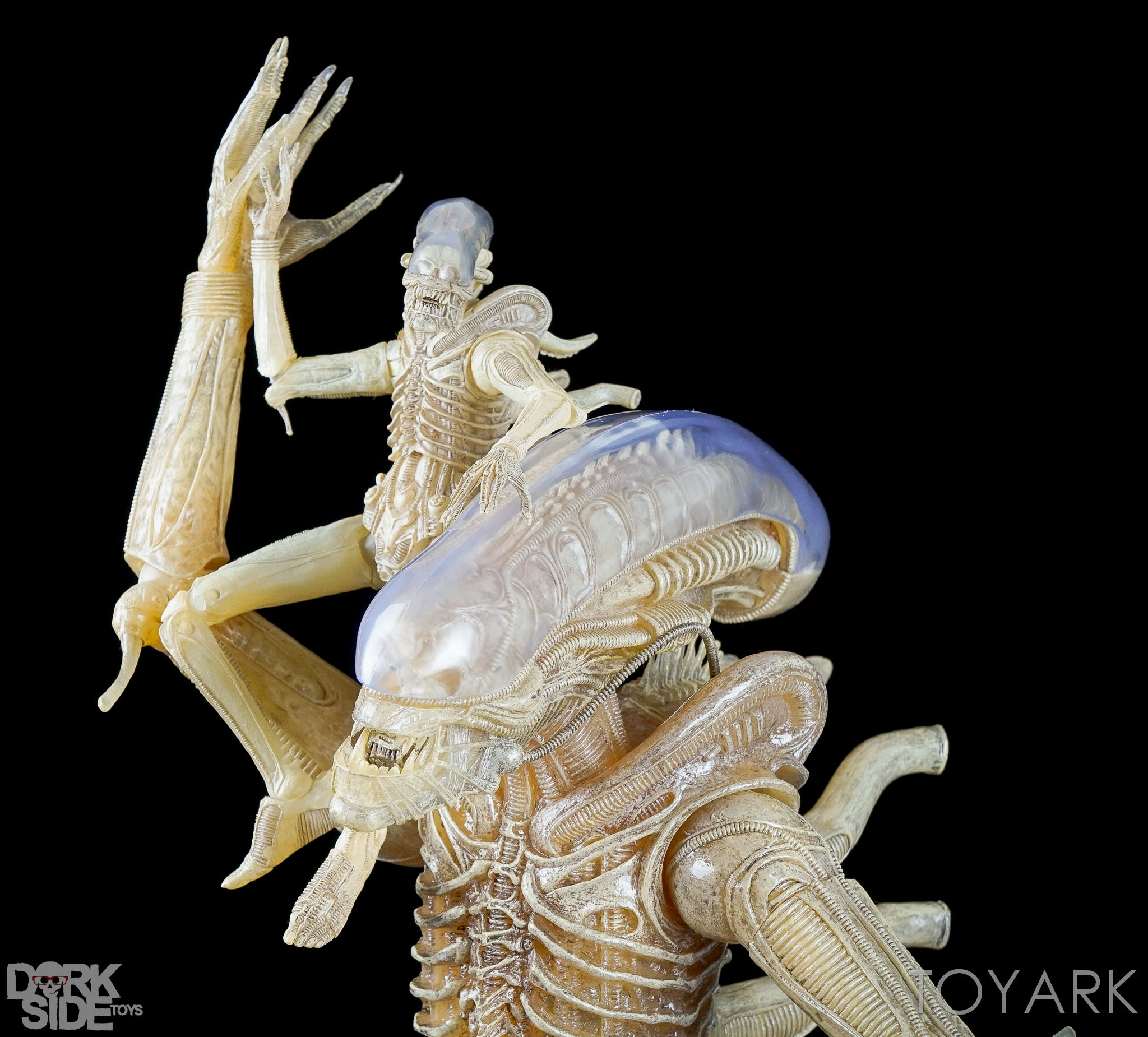 http://news.toyark.com/wp-content/uploads/sites/4/2016/10/NECA-Quarter-Scale-Concept-Alien-048.jpg