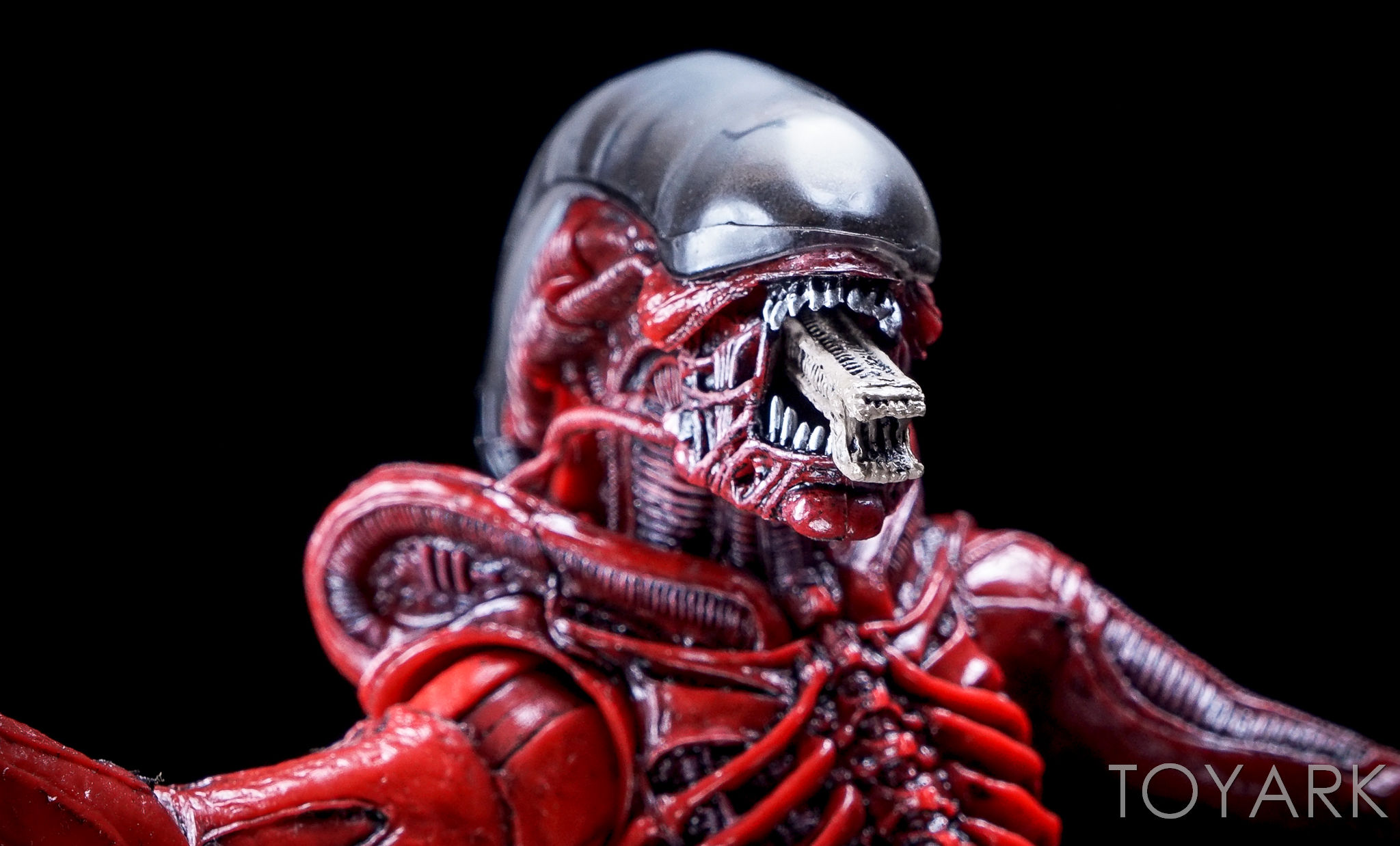 http://news.toyark.com/wp-content/uploads/sites/4/2016/10/NECA-TRU-Aliens-Genocide-2-Pack-021.jpg