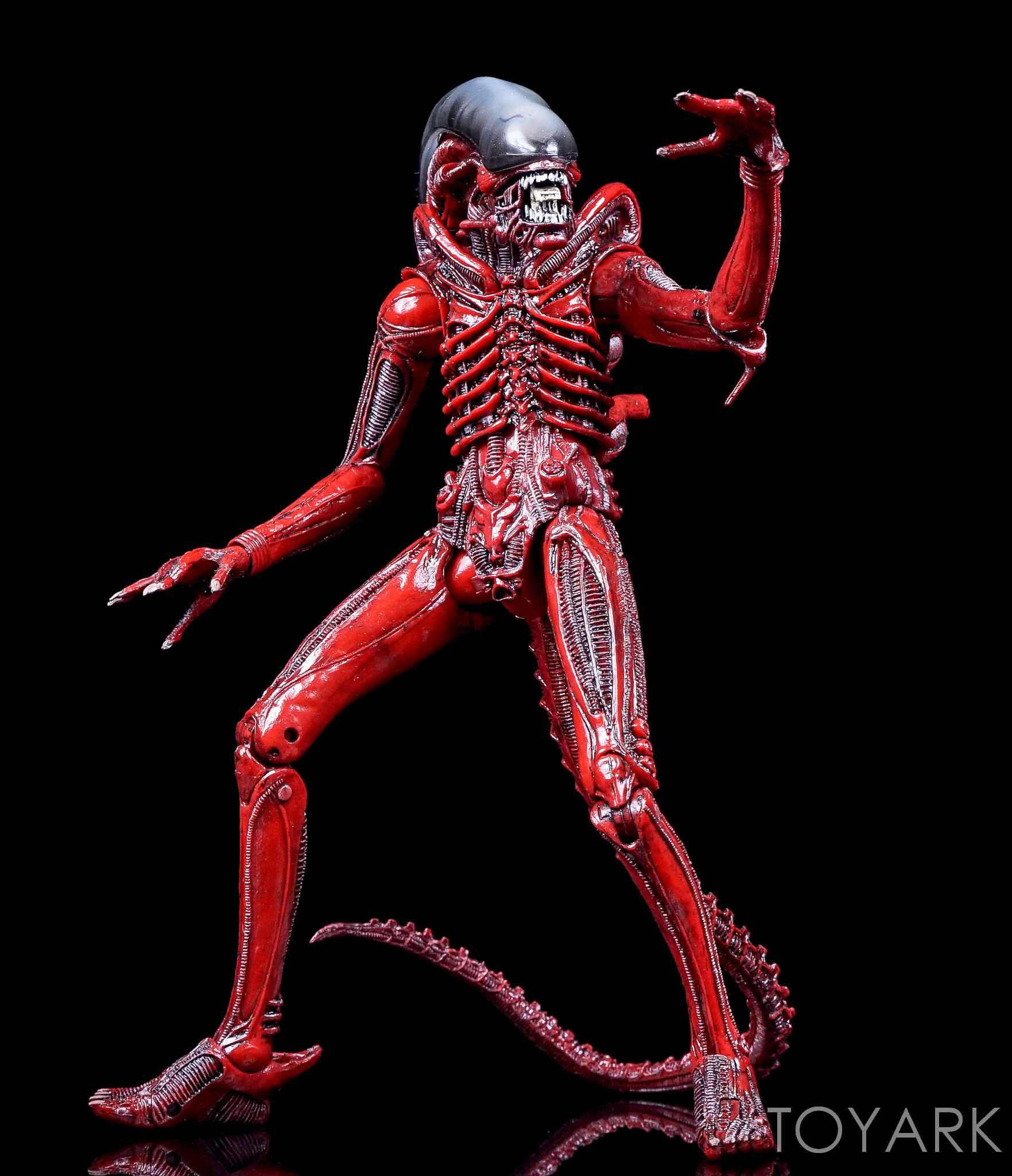 http://news.toyark.com/wp-content/uploads/sites/4/2016/10/NECA-TRU-Aliens-Genocide-2-Pack-023.jpg