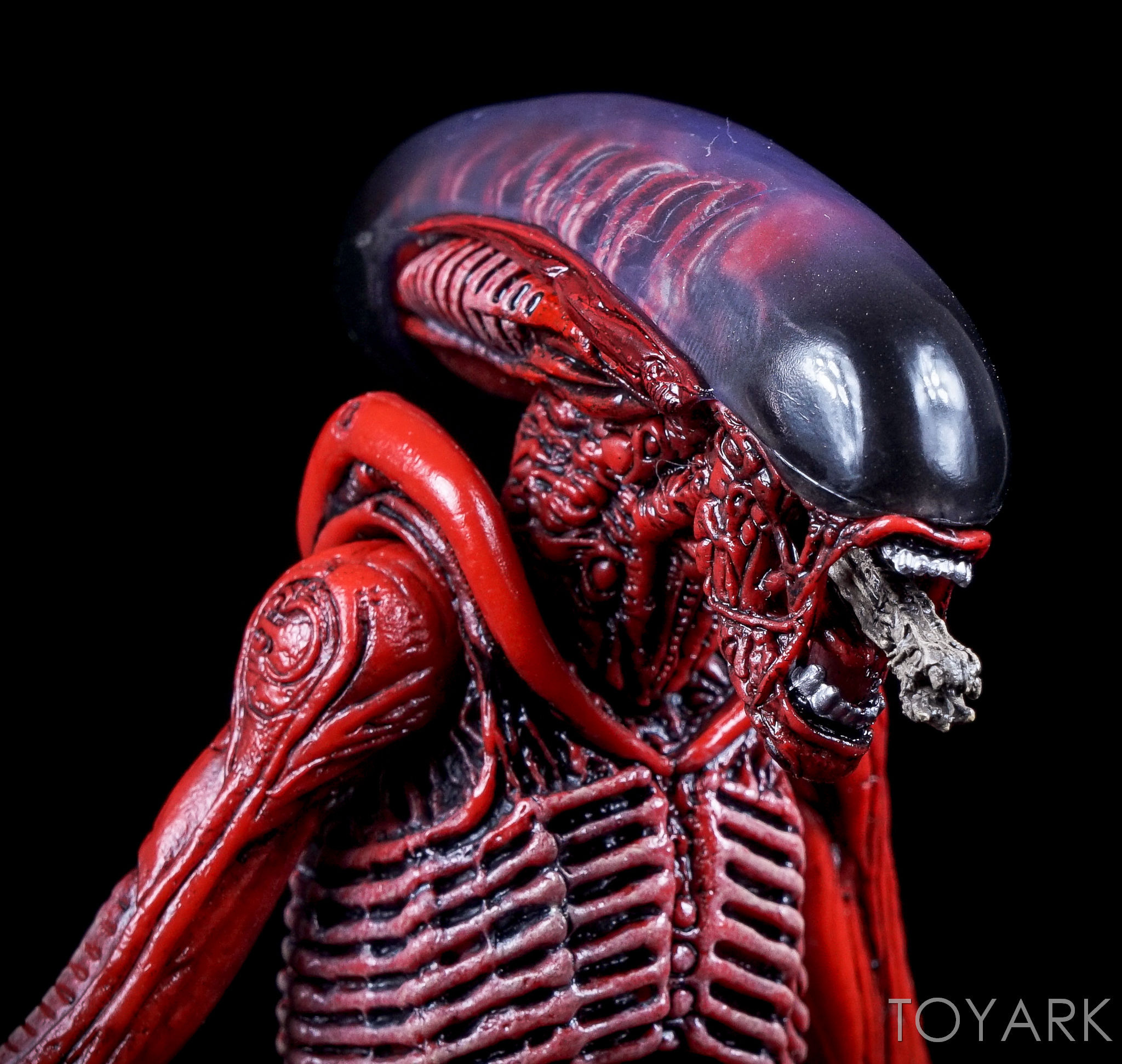 http://news.toyark.com/wp-content/uploads/sites/4/2016/10/NECA-TRU-Aliens-Genocide-2-Pack-033.jpg