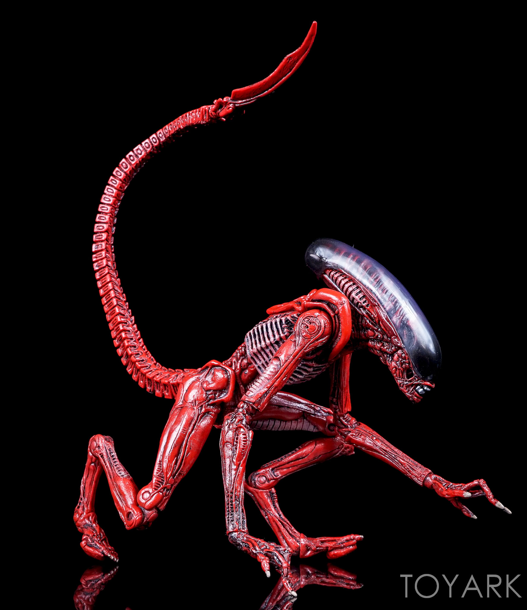 http://news.toyark.com/wp-content/uploads/sites/4/2016/10/NECA-TRU-Aliens-Genocide-2-Pack-039.jpg