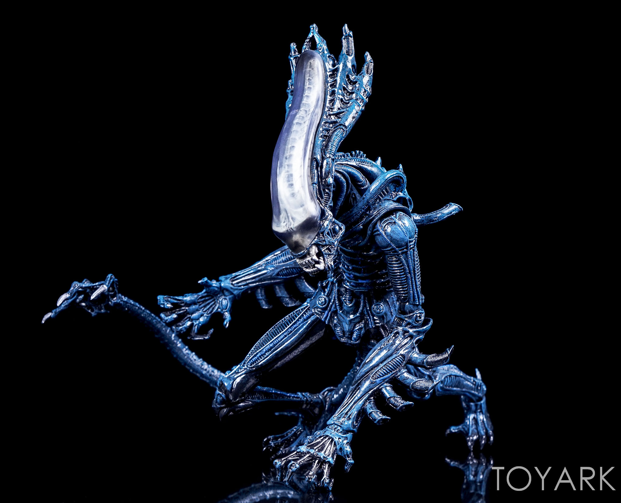 http://news.toyark.com/wp-content/uploads/sites/4/2016/12/Aliens-Series-10-by-NECA-023.jpg