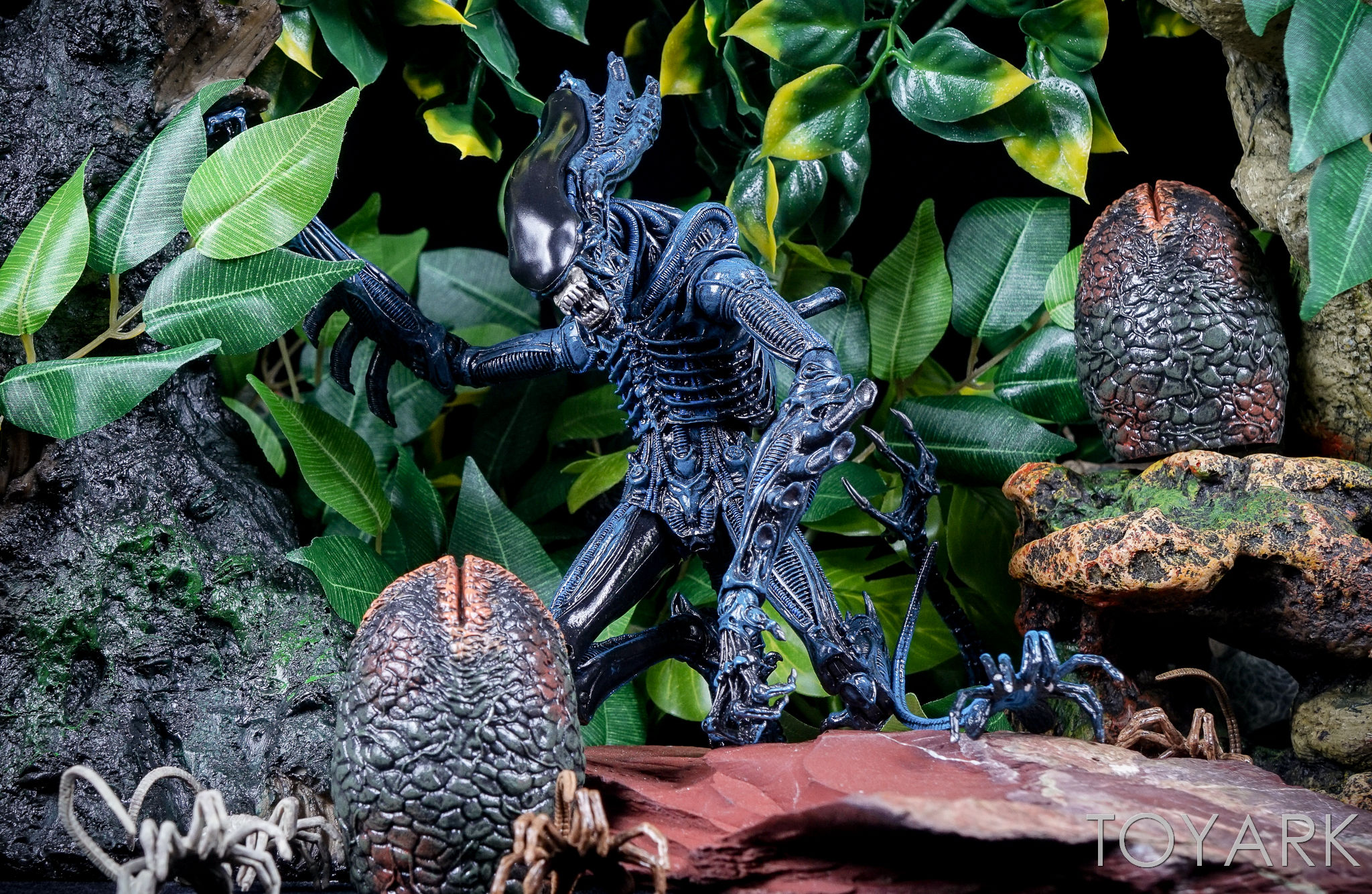 http://news.toyark.com/wp-content/uploads/sites/4/2016/12/Aliens-Series-10-by-NECA-076.jpg