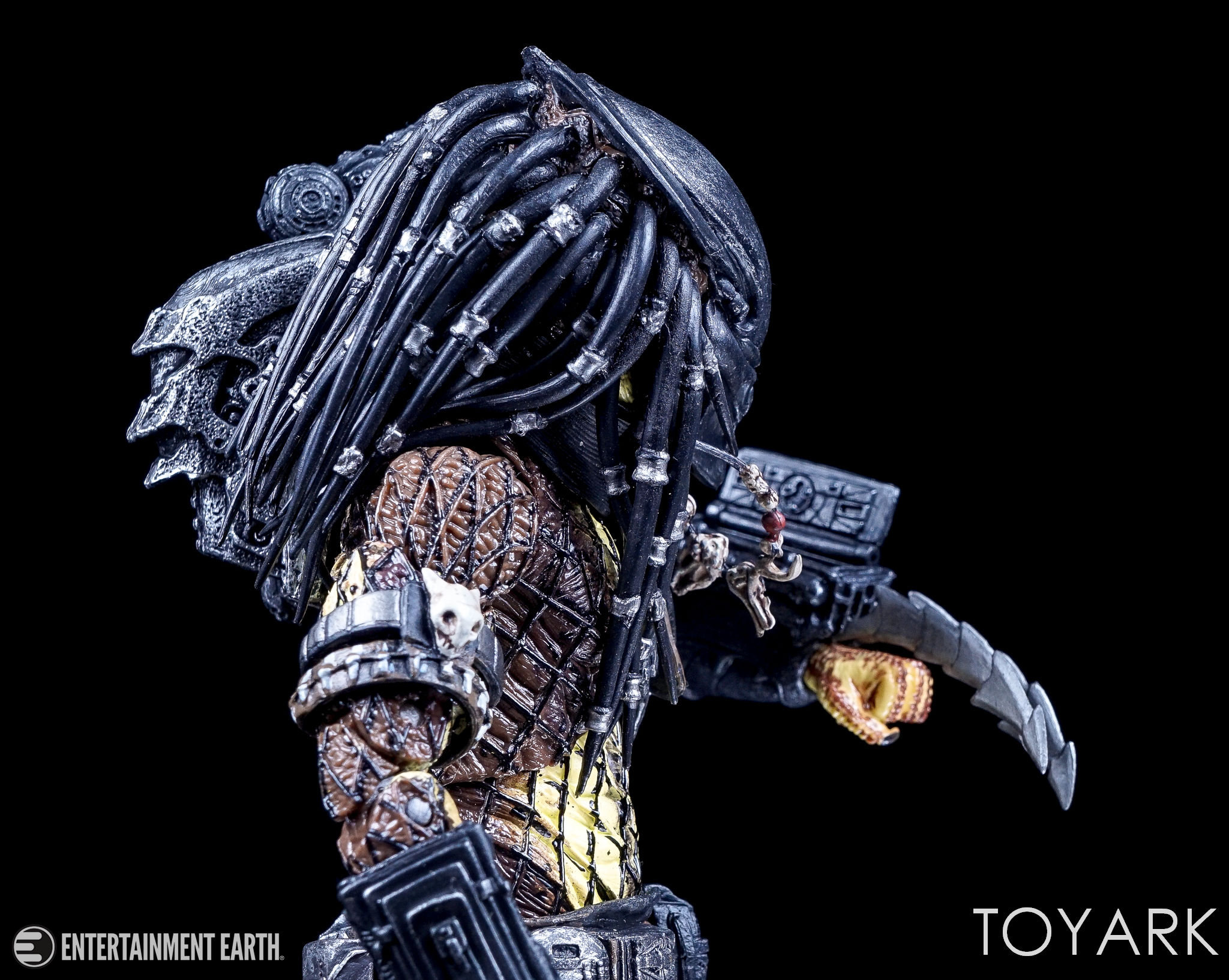 predator - photo #42