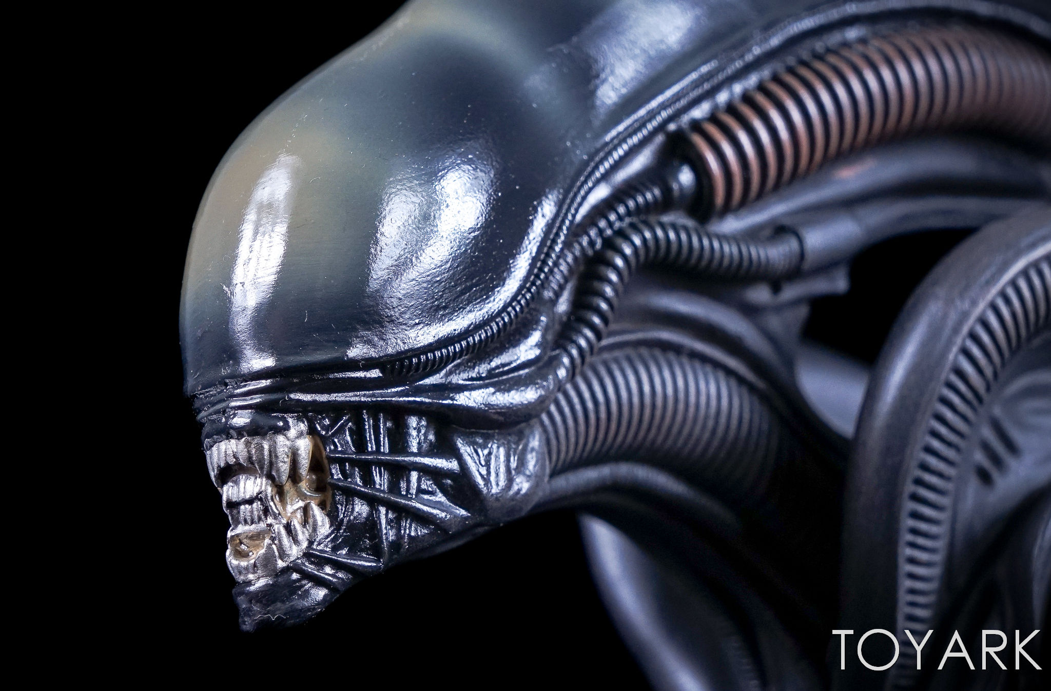 http://news.toyark.com/wp-content/uploads/sites/4/2017/05/Hero-Collector-Mega-Alien-Statue-027.jpg
