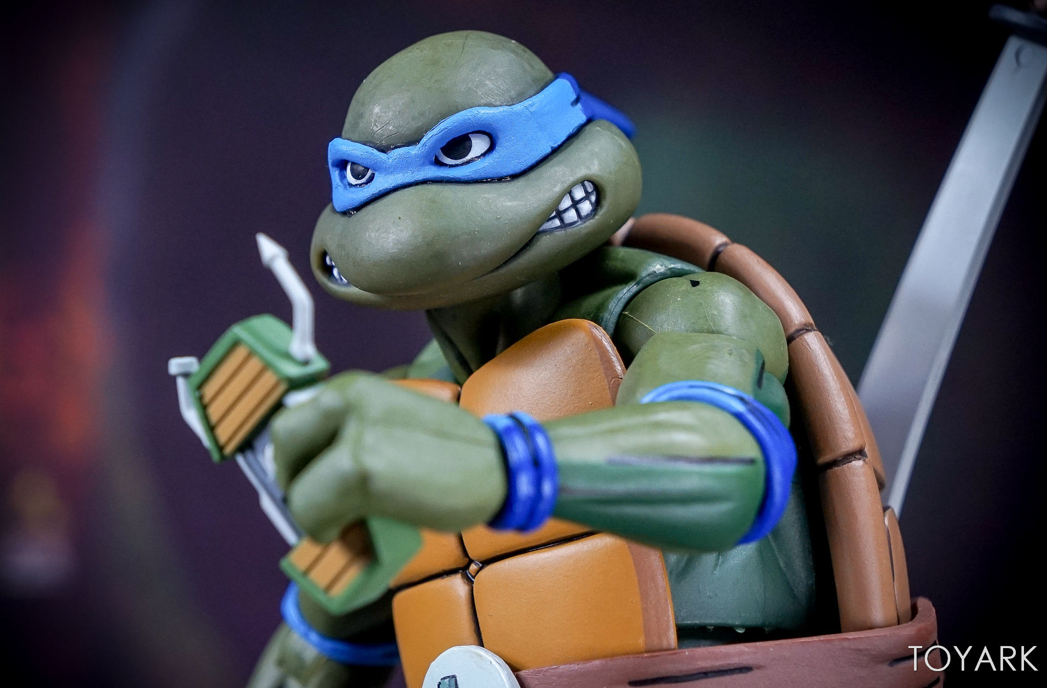 http://news.toyark.com/wp-content/uploads/sites/4/2017/07/NECA-SDCC-2017-Toon-TMNT-028.jpg