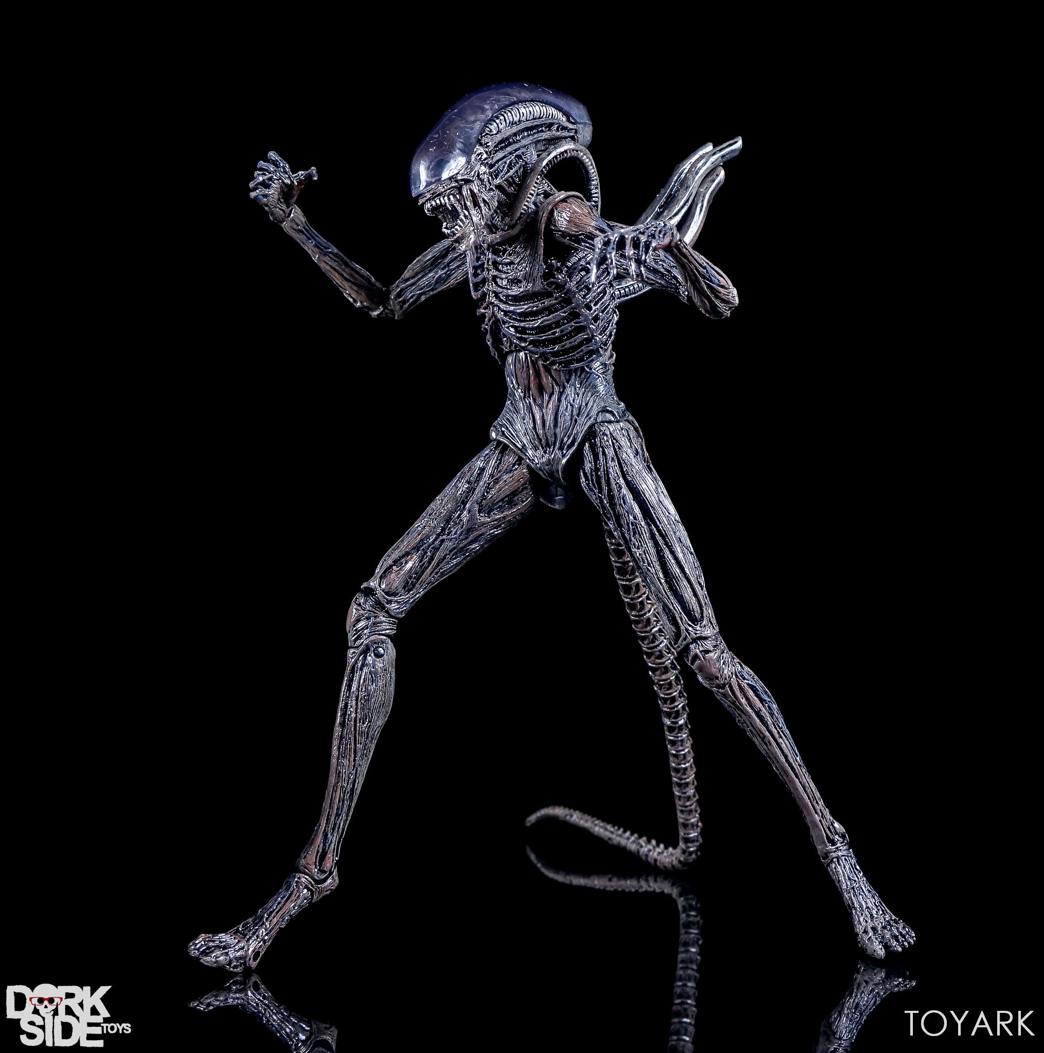 http://news.toyark.com/wp-content/uploads/sites/4/2017/08/NECA-Alien-Covenant-Figures-024.jpg