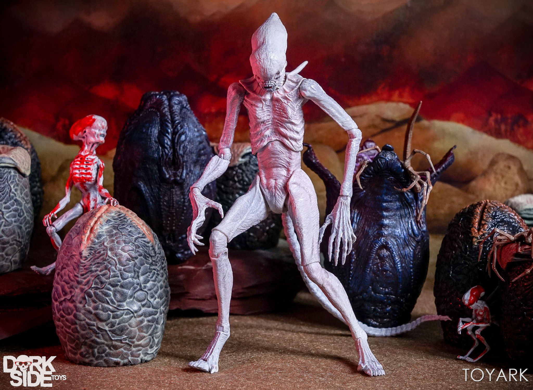 http://news.toyark.com/wp-content/uploads/sites/4/2017/08/NECA-Alien-Covenant-Figures-046.jpg