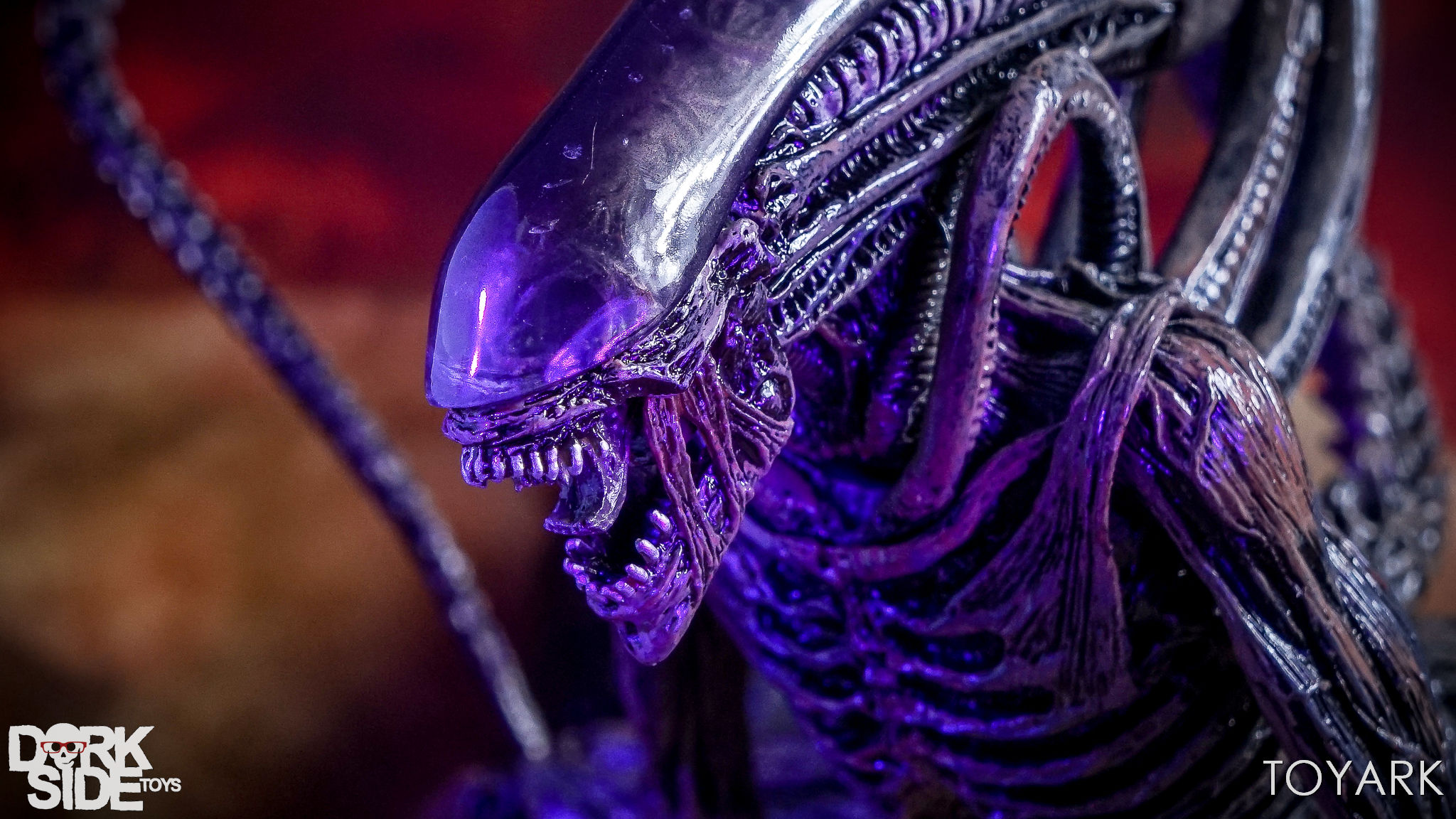 http://news.toyark.com/wp-content/uploads/sites/4/2017/08/NECA-Alien-Covenant-Figures-054.jpg