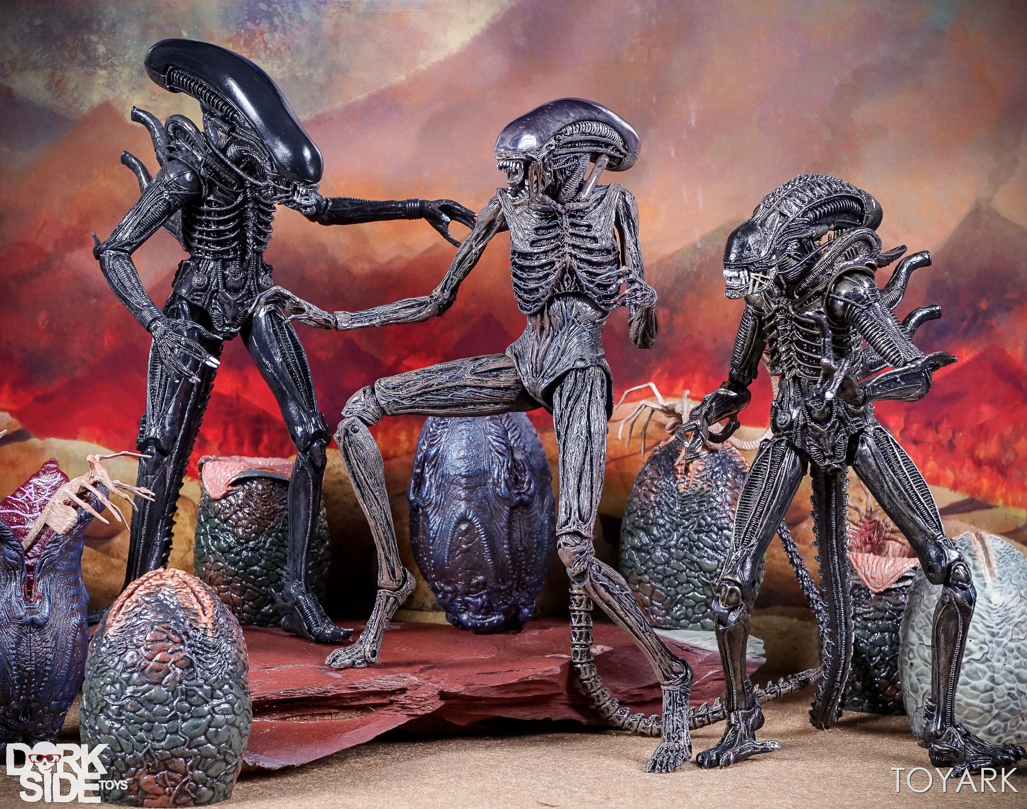 http://news.toyark.com/wp-content/uploads/sites/4/2017/08/NECA-Alien-Covenant-Figures-056.jpg