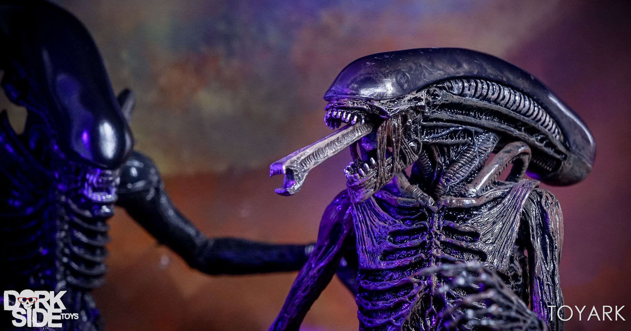 http://news.toyark.com/wp-content/uploads/sites/4/2017/08/NECA-Alien-Covenant-Figures-058.jpg